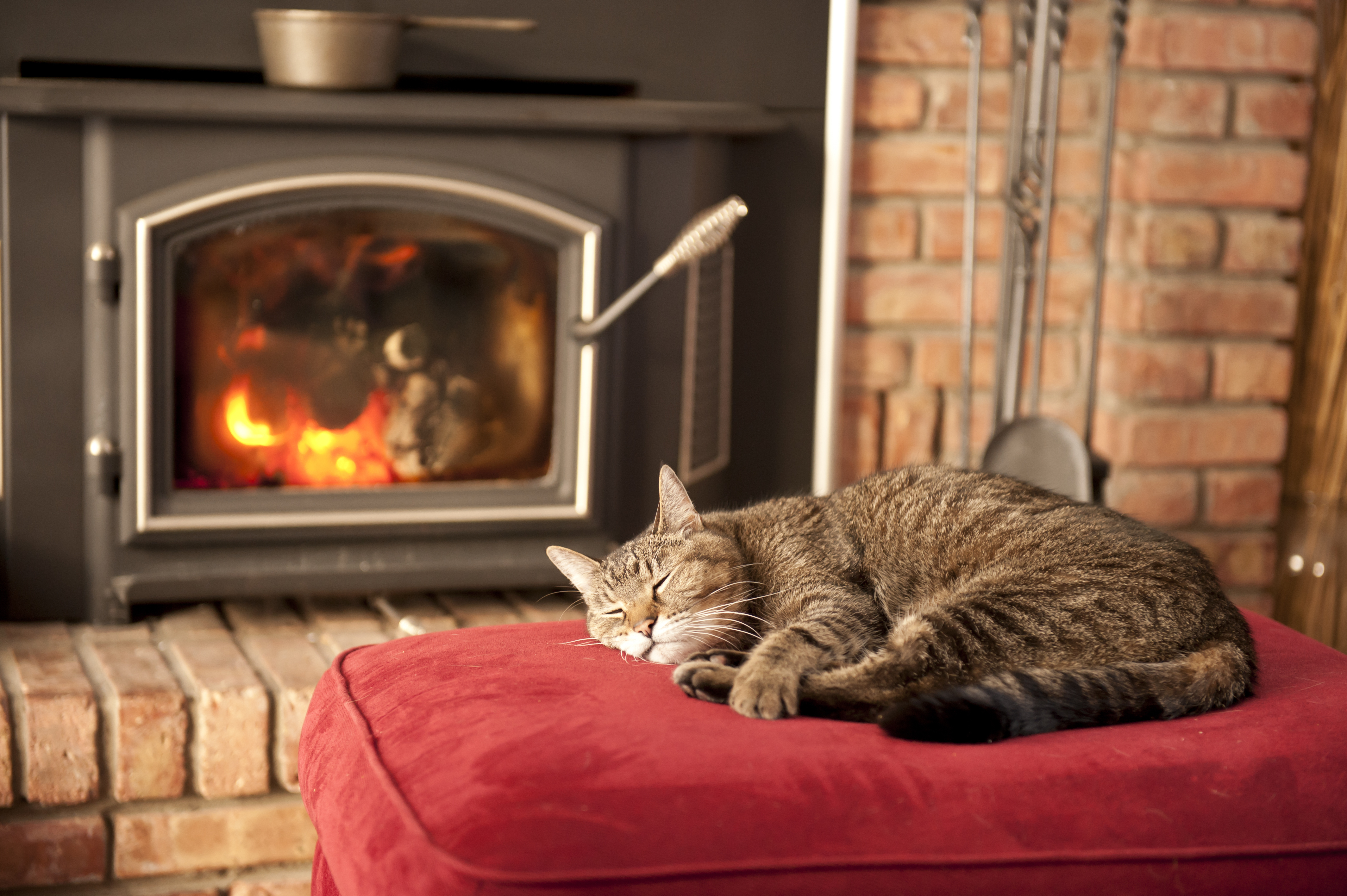 Possible Reasons Smoke Is Backing Up Into Wood Stove | Home Guides