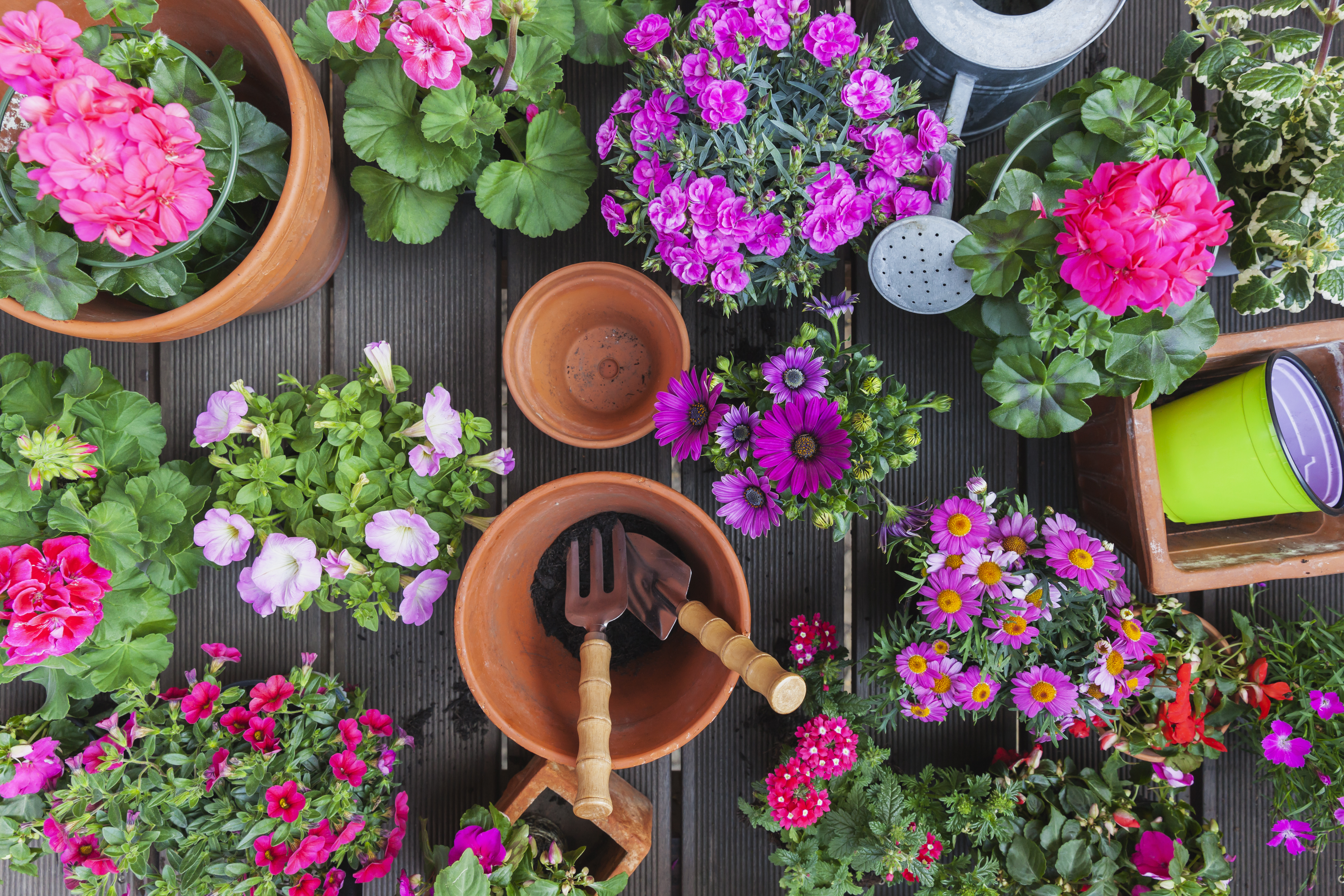 How to Make Holes in Flower Pots for Water to Run Out & How to Make Holes in Flower Pots for Water to Run Out | Home Guides ...