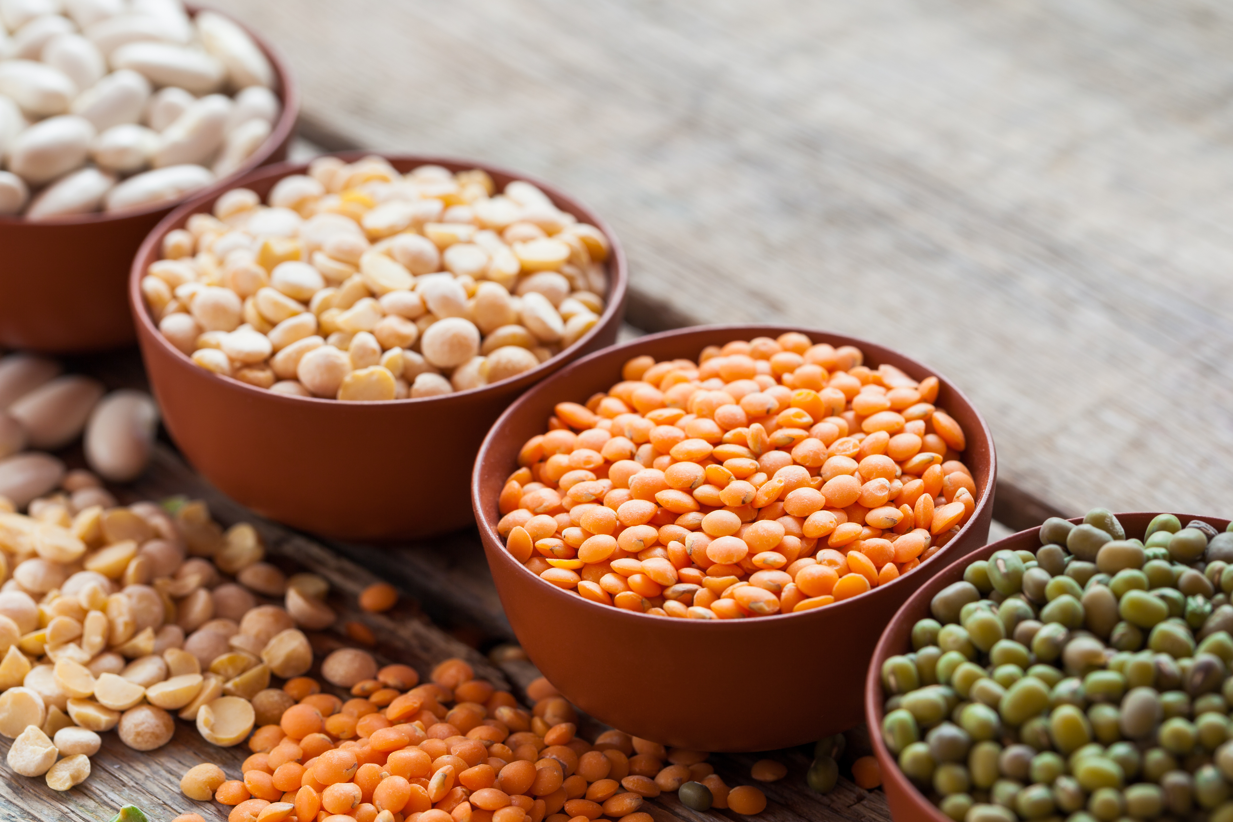 Dried Beans vs  Canned Beans for Nutritional Values