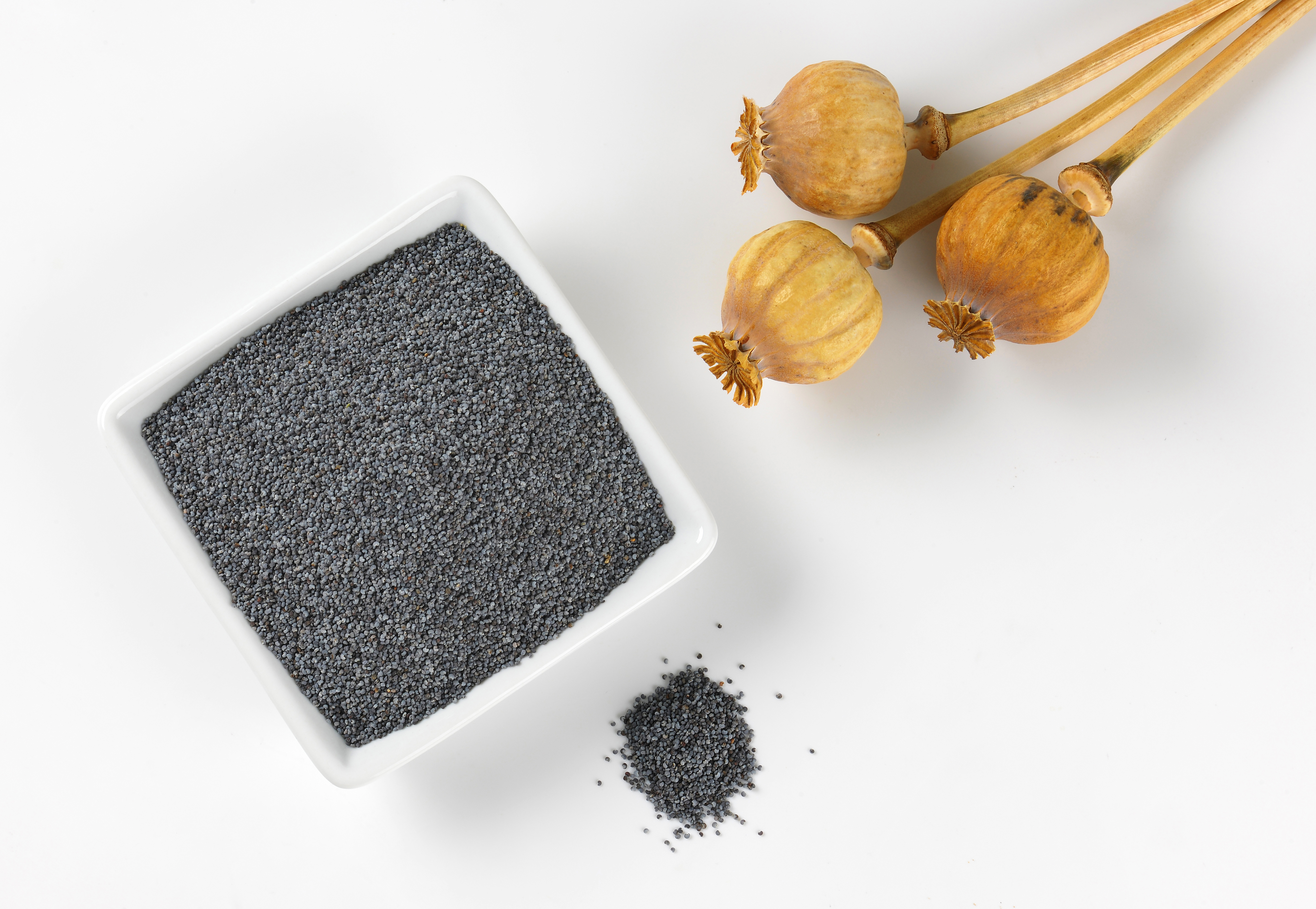 What Are the Benefits of Poppy Seeds? | Healthy Eating | SF Gate