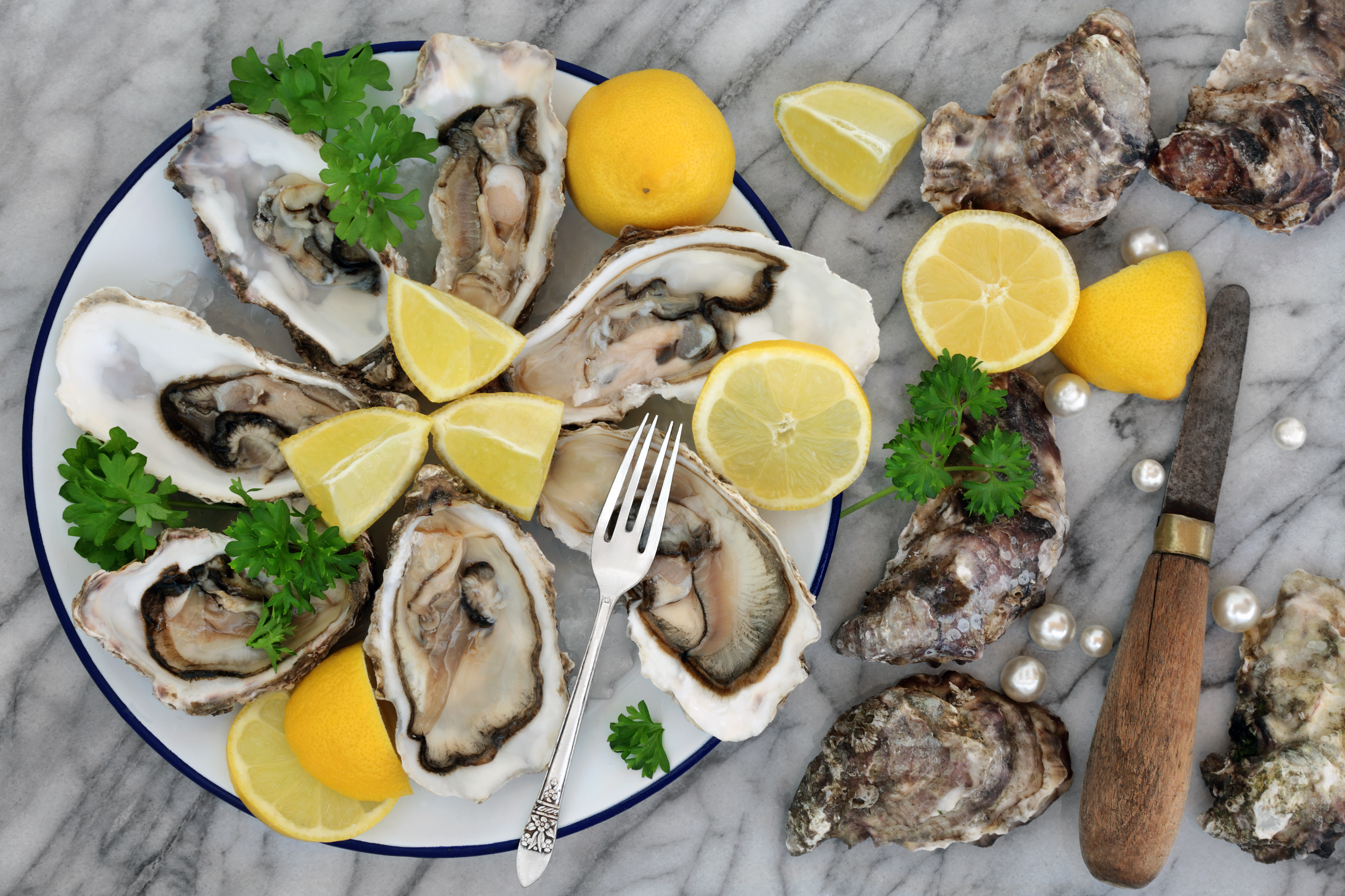 the advantages of oysters | healthy eating | sf gate