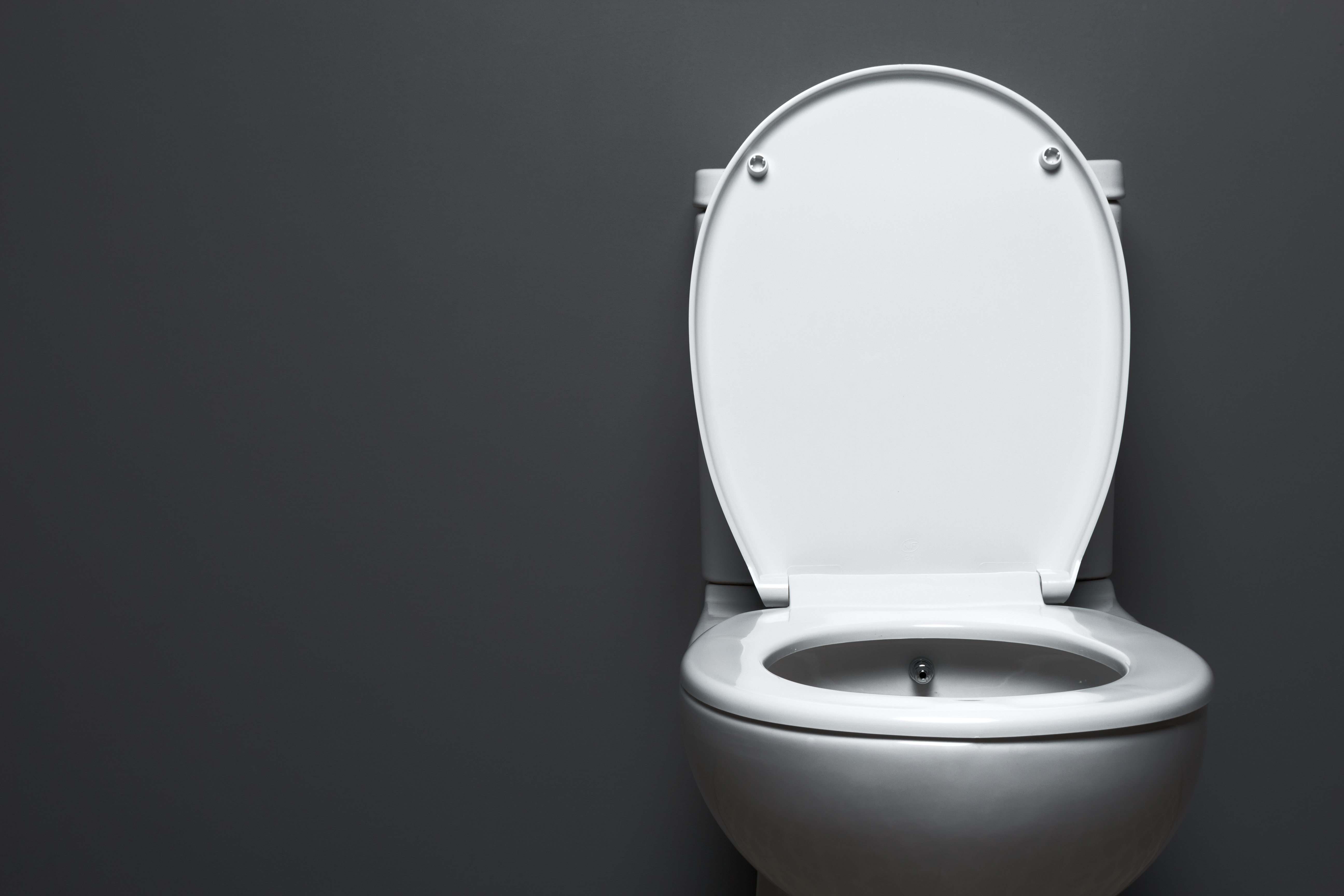 Outstanding How To Prevent A Black Waterline In The Toilet Home Guides Ibusinesslaw Wood Chair Design Ideas Ibusinesslaworg