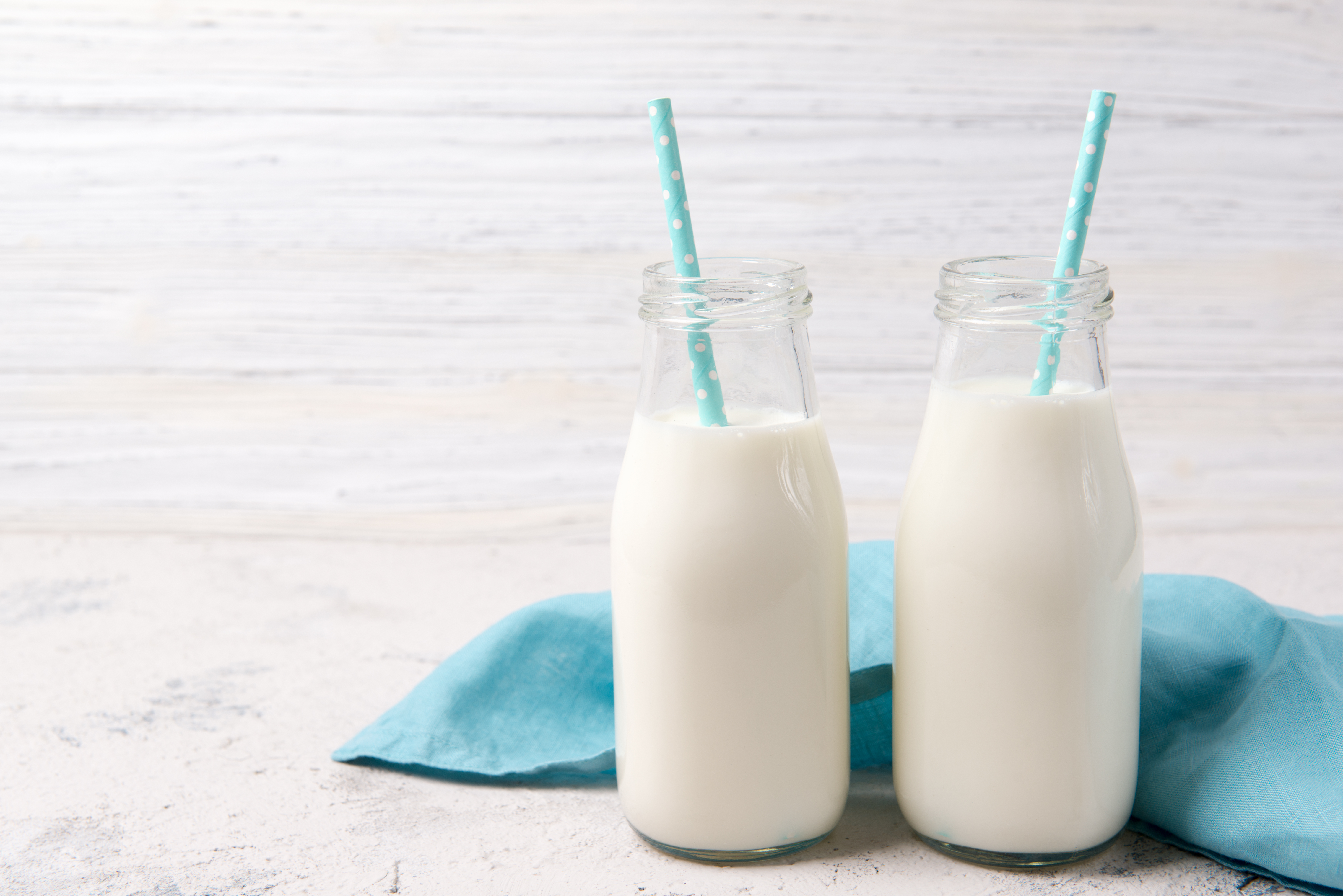 what is better for adults, whole milk or two percent milk? | healthy