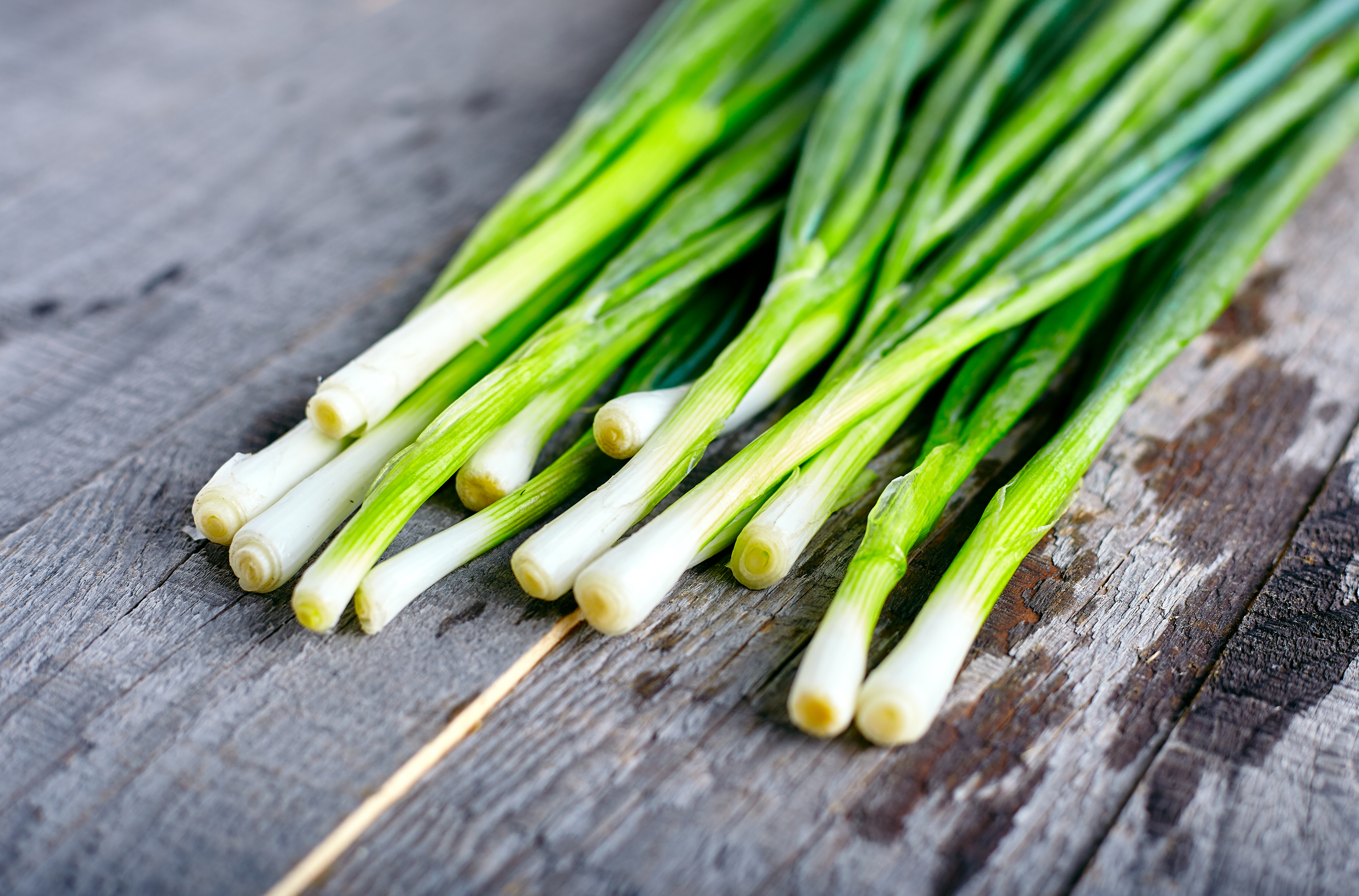what parts of a green onion can you eat? | healthy eating