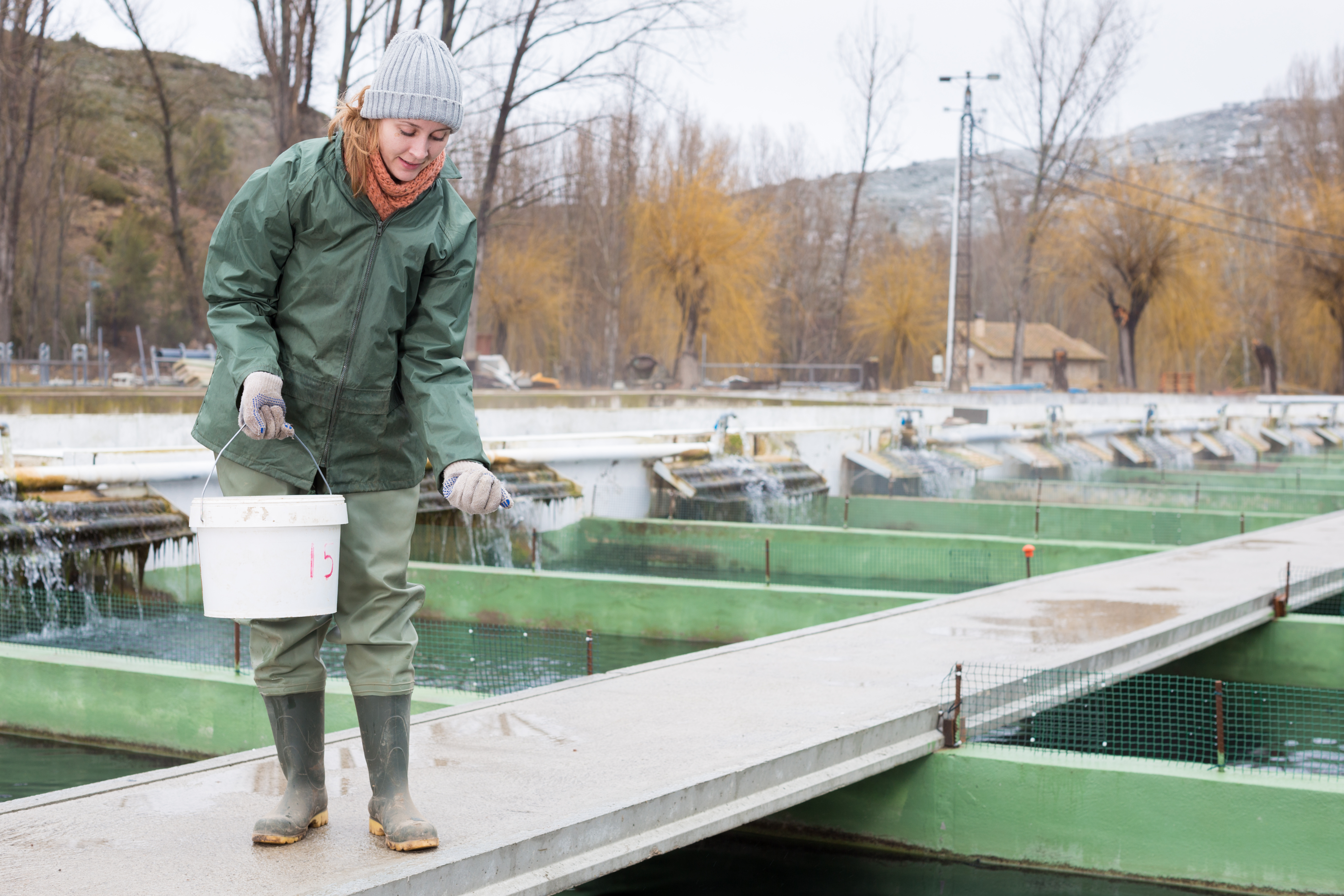 Positive Effects of Fish Farming | Career Trend