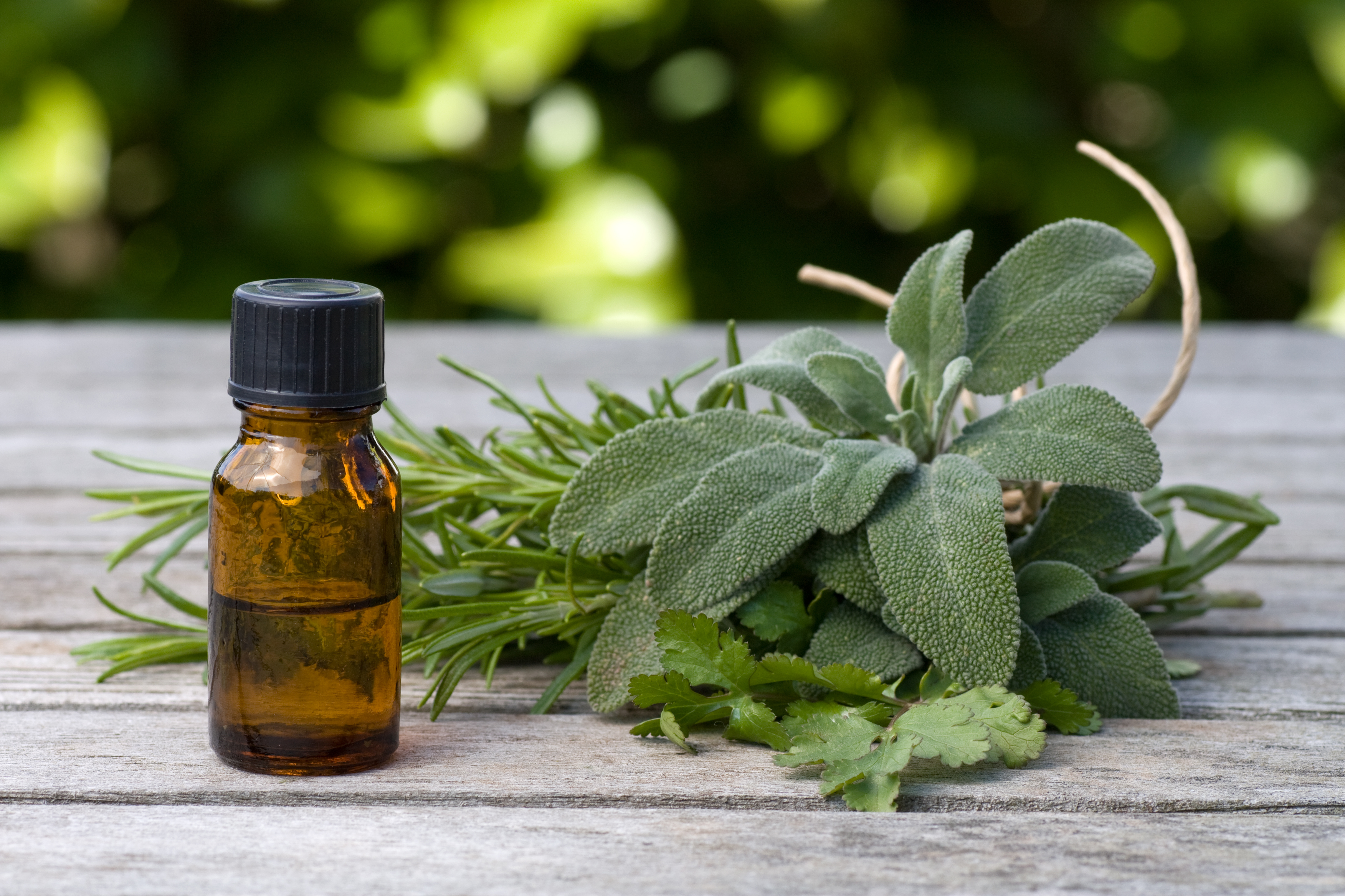 How to Take Staphysagria Homeopathic Remedy | LEAFtv