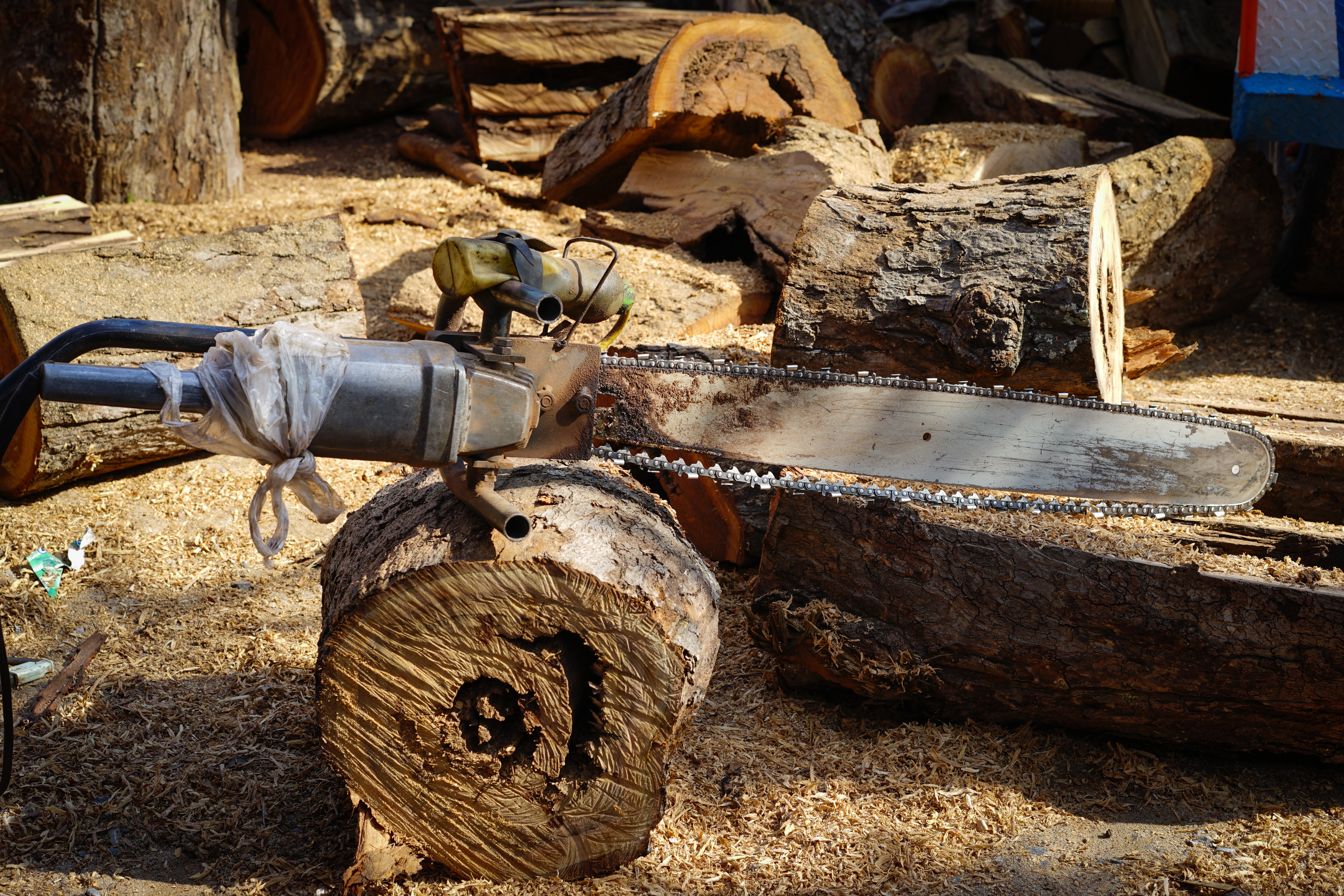 How To Troubleshoot And Test A Chainsaw Coil   Hunker