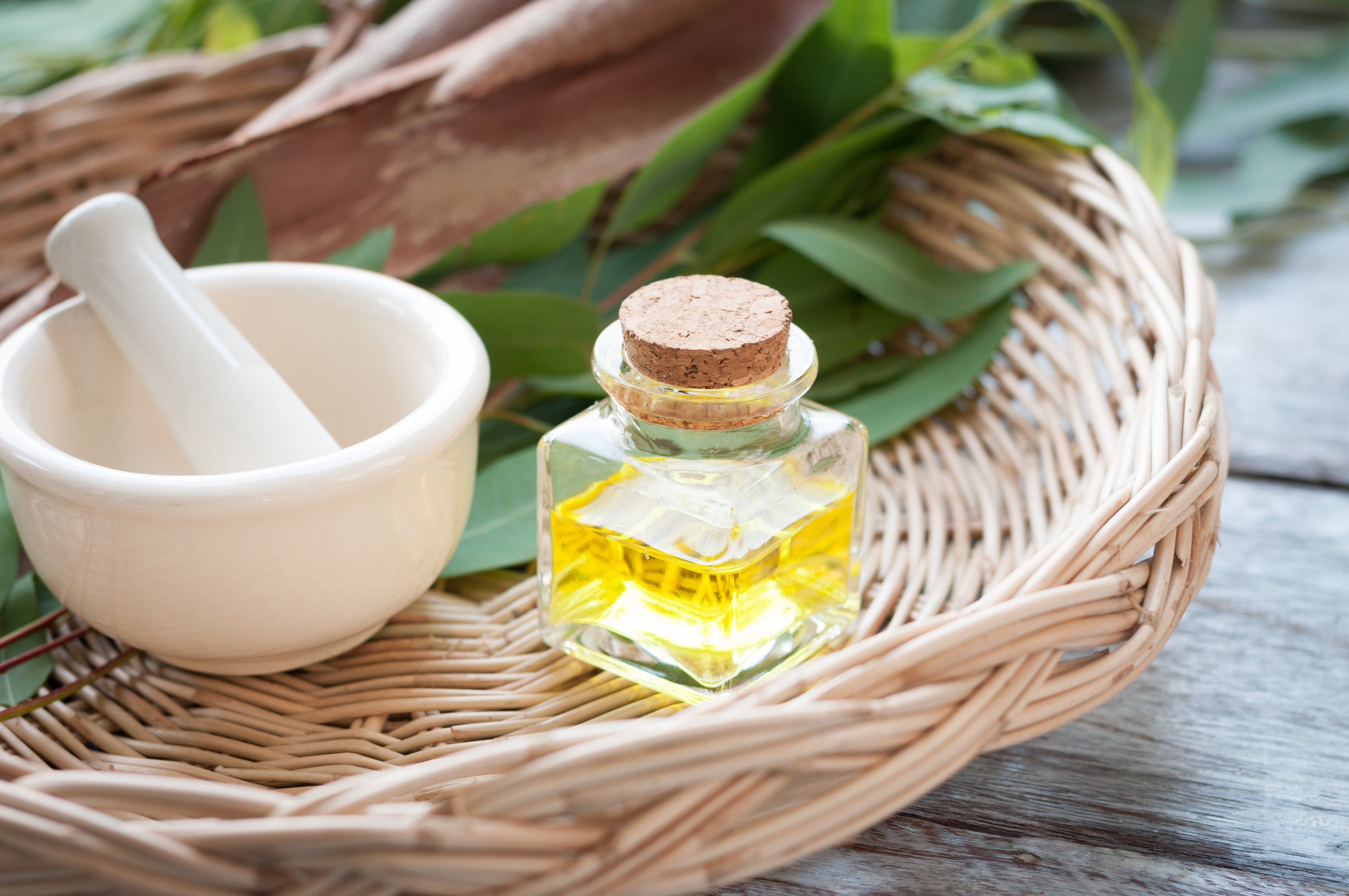 Can Eucalyptus Oil Be Dangerous? | Healthy Eating | SF Gate