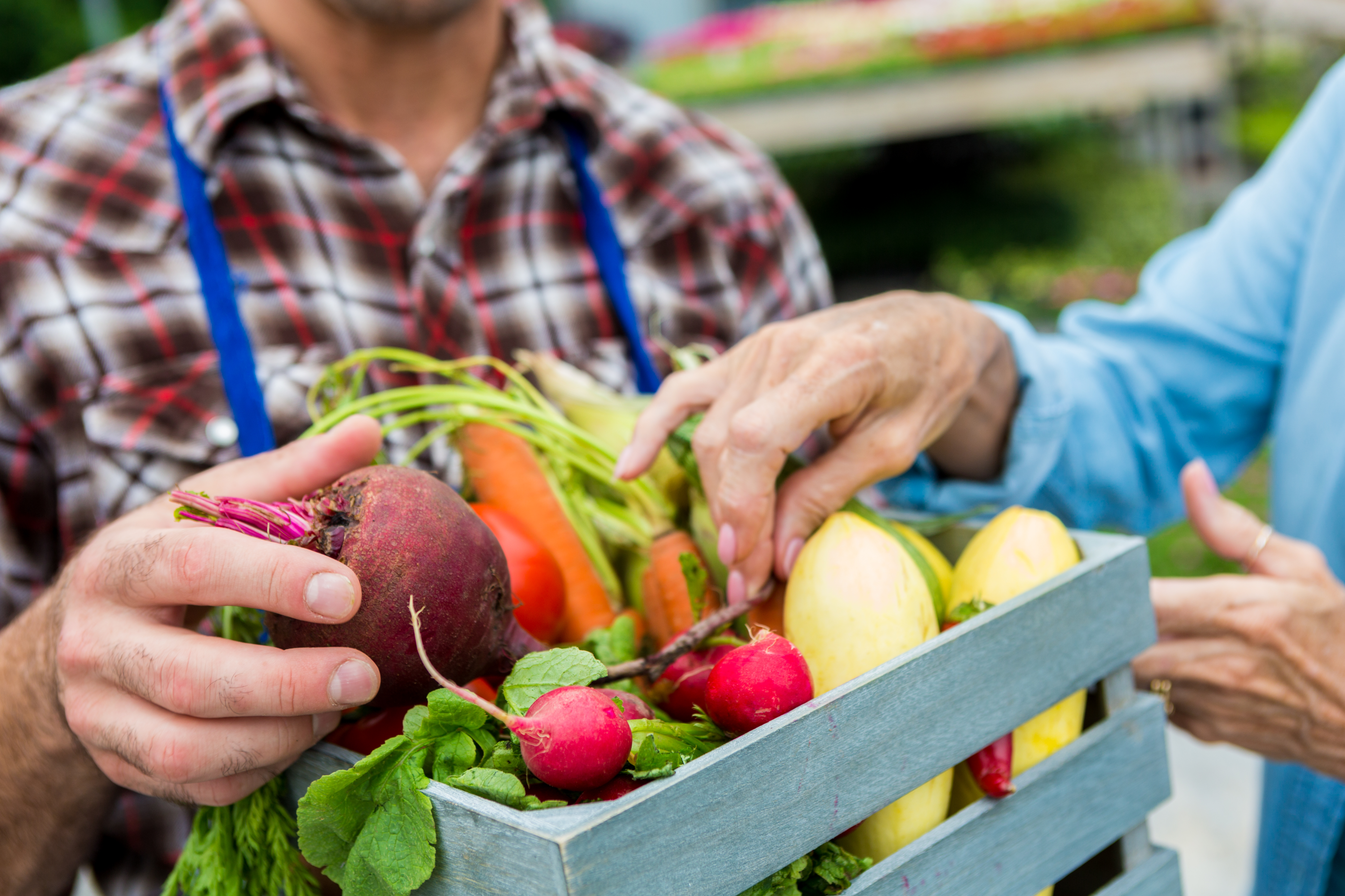 Vegetable Stand Designs : How to make money selling fruits vegetables from a produce stand