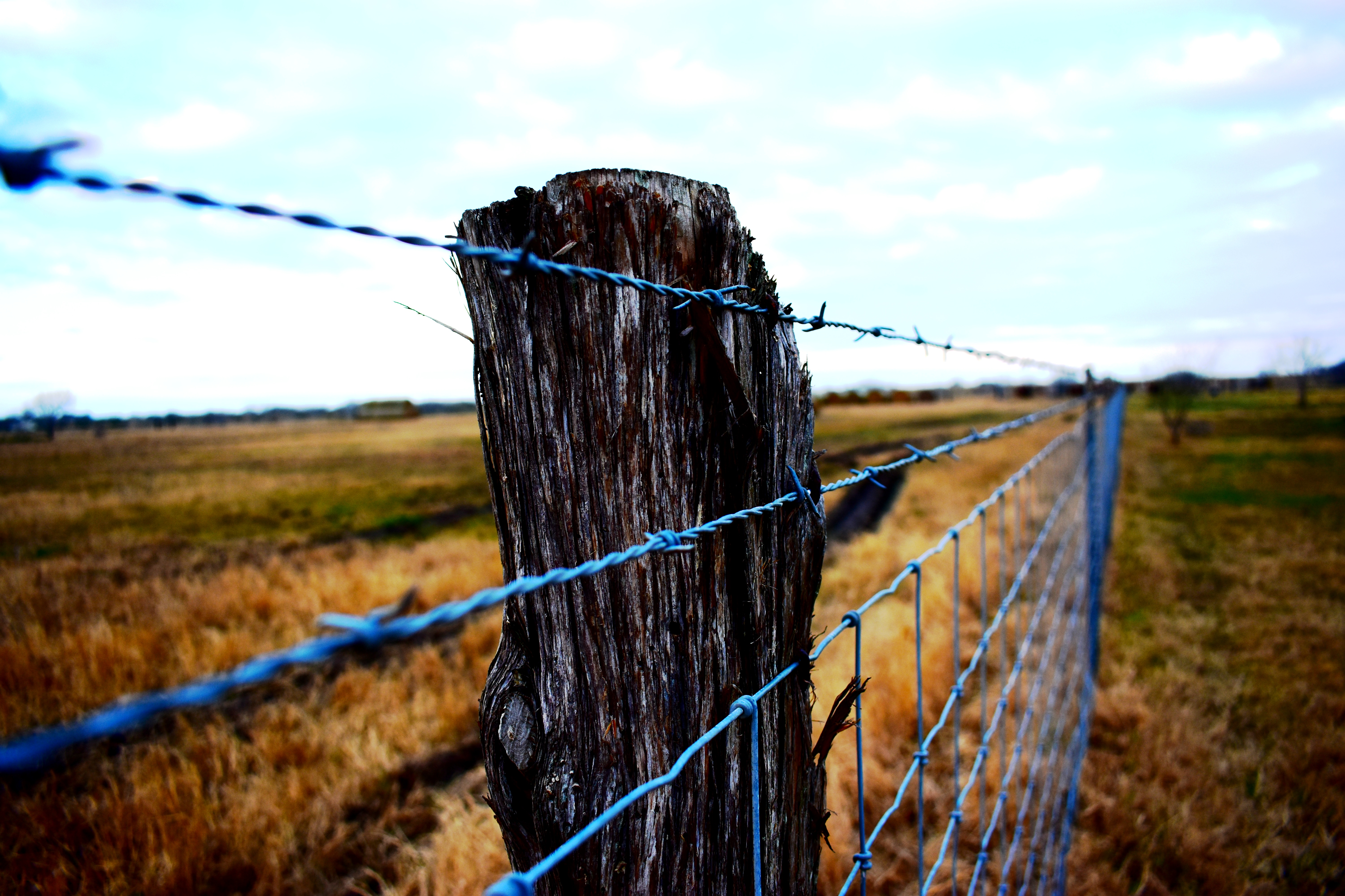 Reinforcing a Weak Fence Post | Home Guides | SF Gate