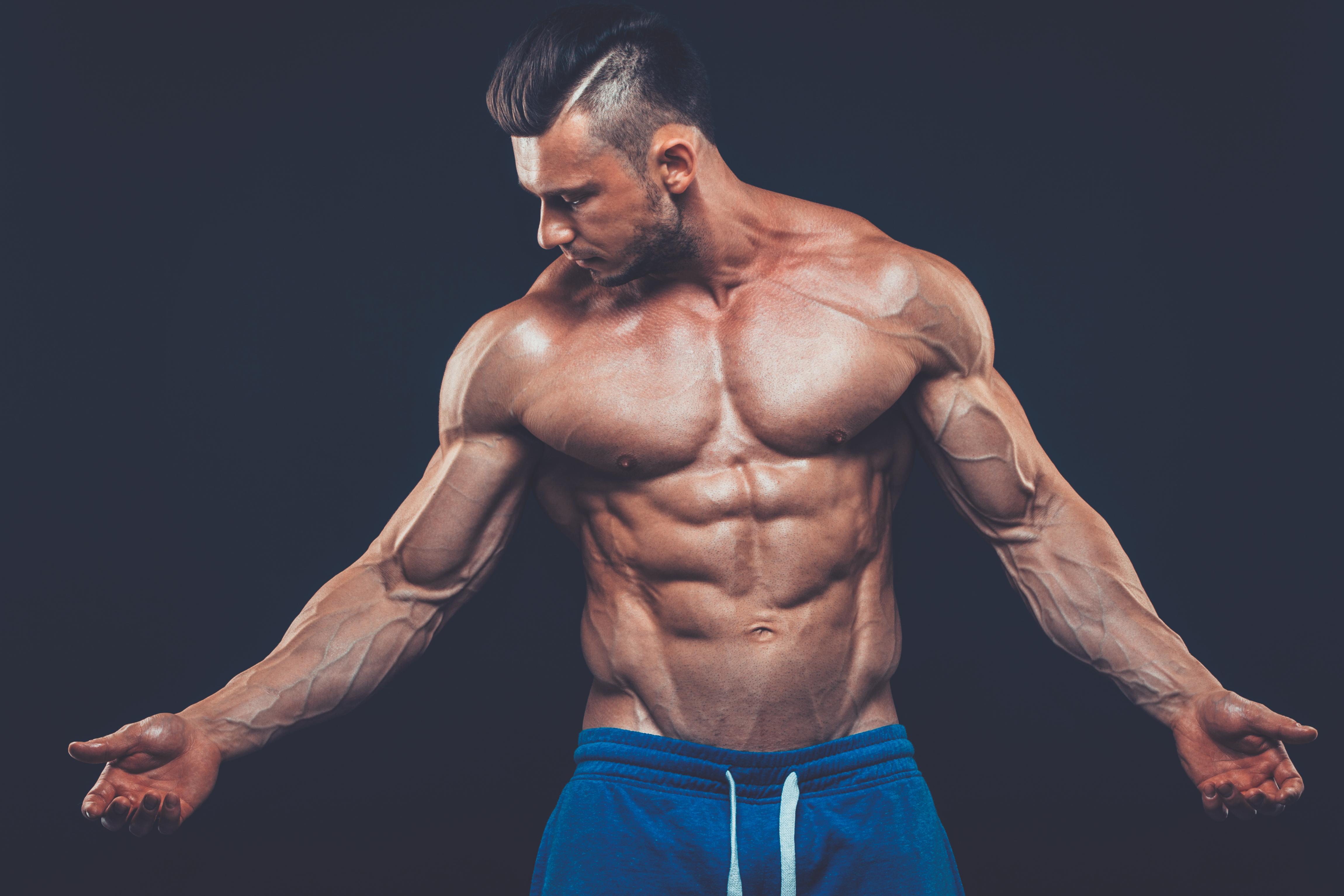 Cuerpo humano: partes y funciones | Muy Fitness