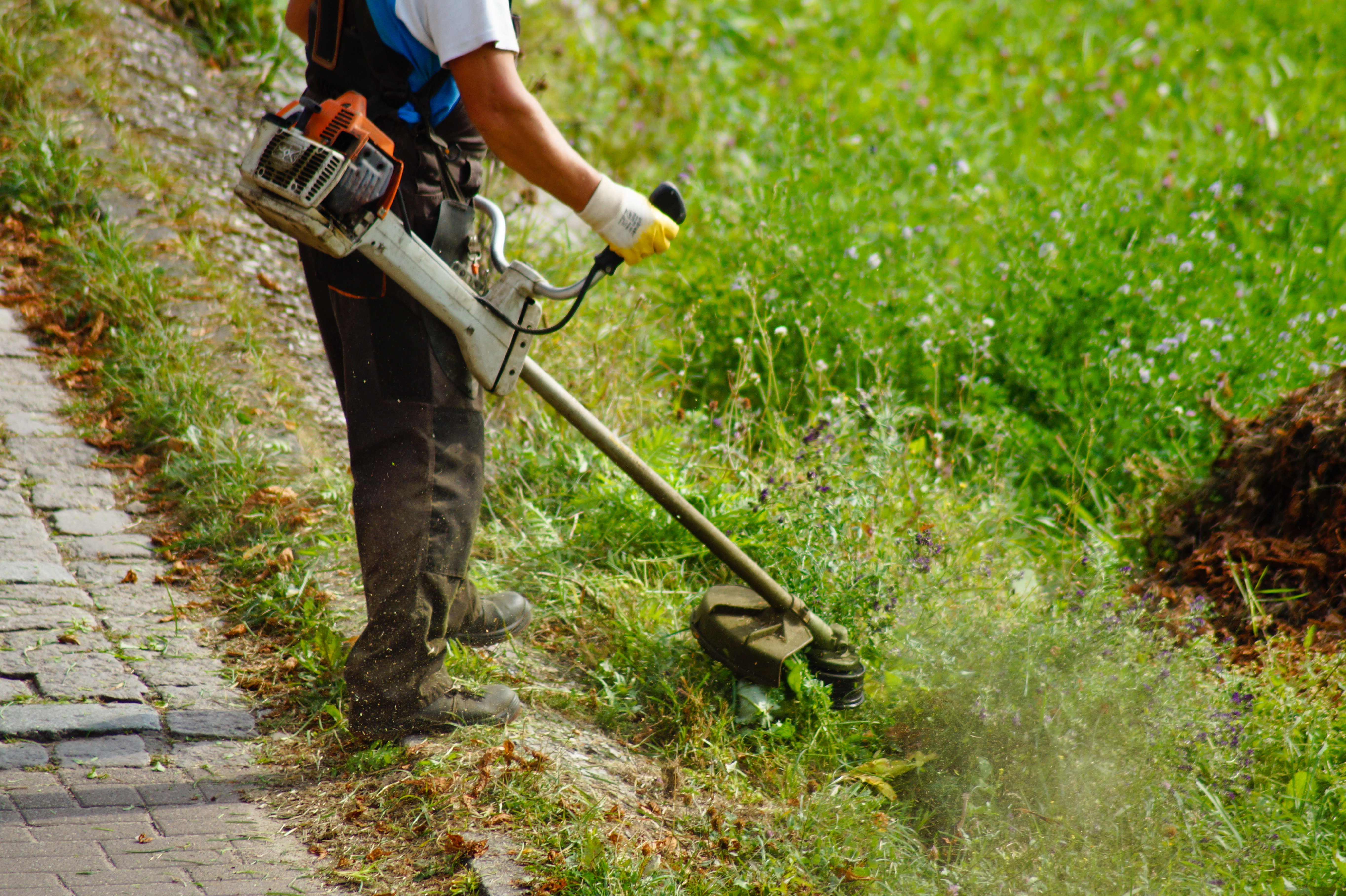 Gas-to-Oil Ratio for a Weed Trimmer | Hunker