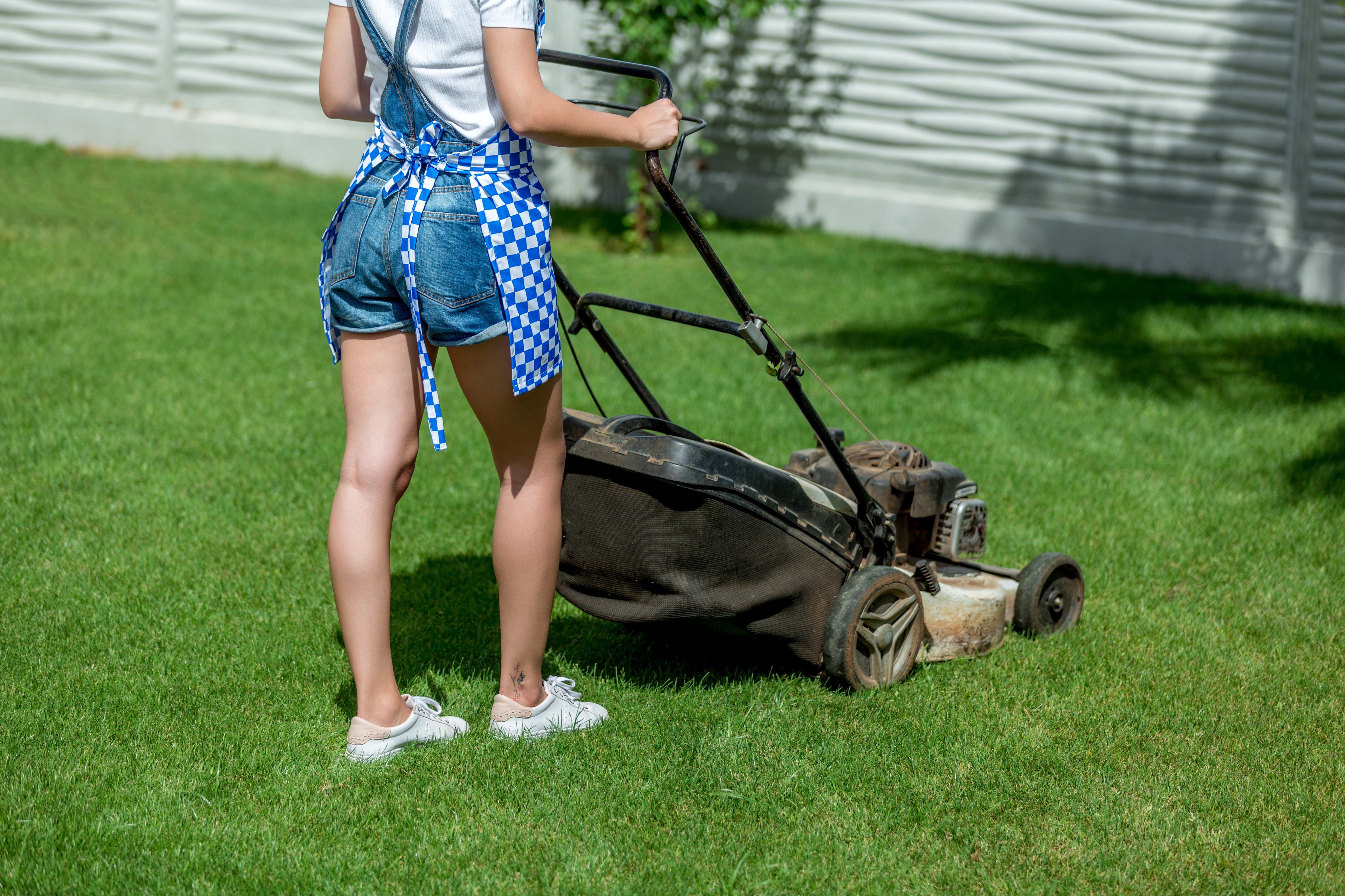 My Push Lawn Mower Doesn't Seem to Be Getting Gas | Home Guides | SF
