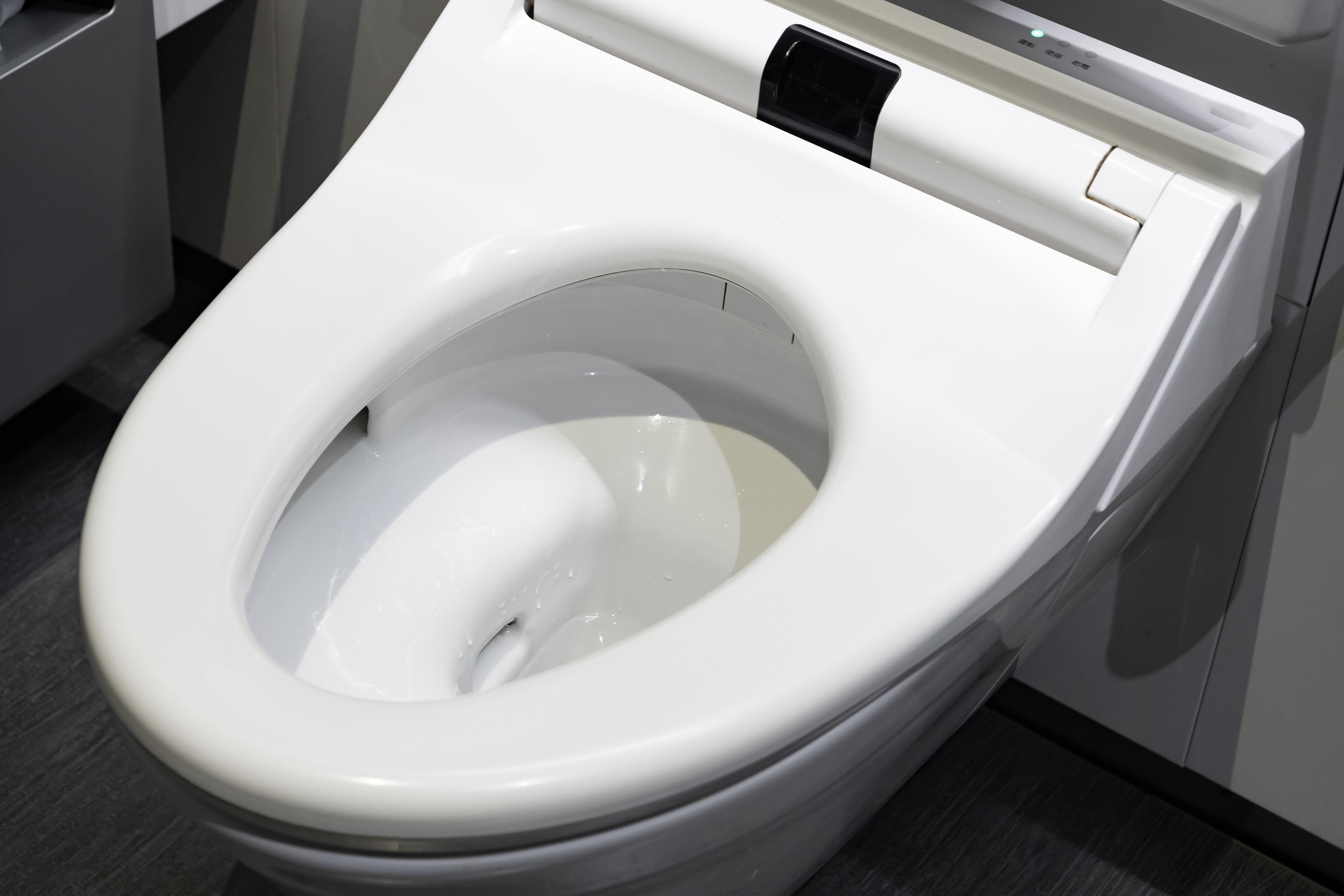 Amazing Toilet Isnt Flushing Properly Home Guides Sf Gate Short Links Chair Design For Home Short Linksinfo