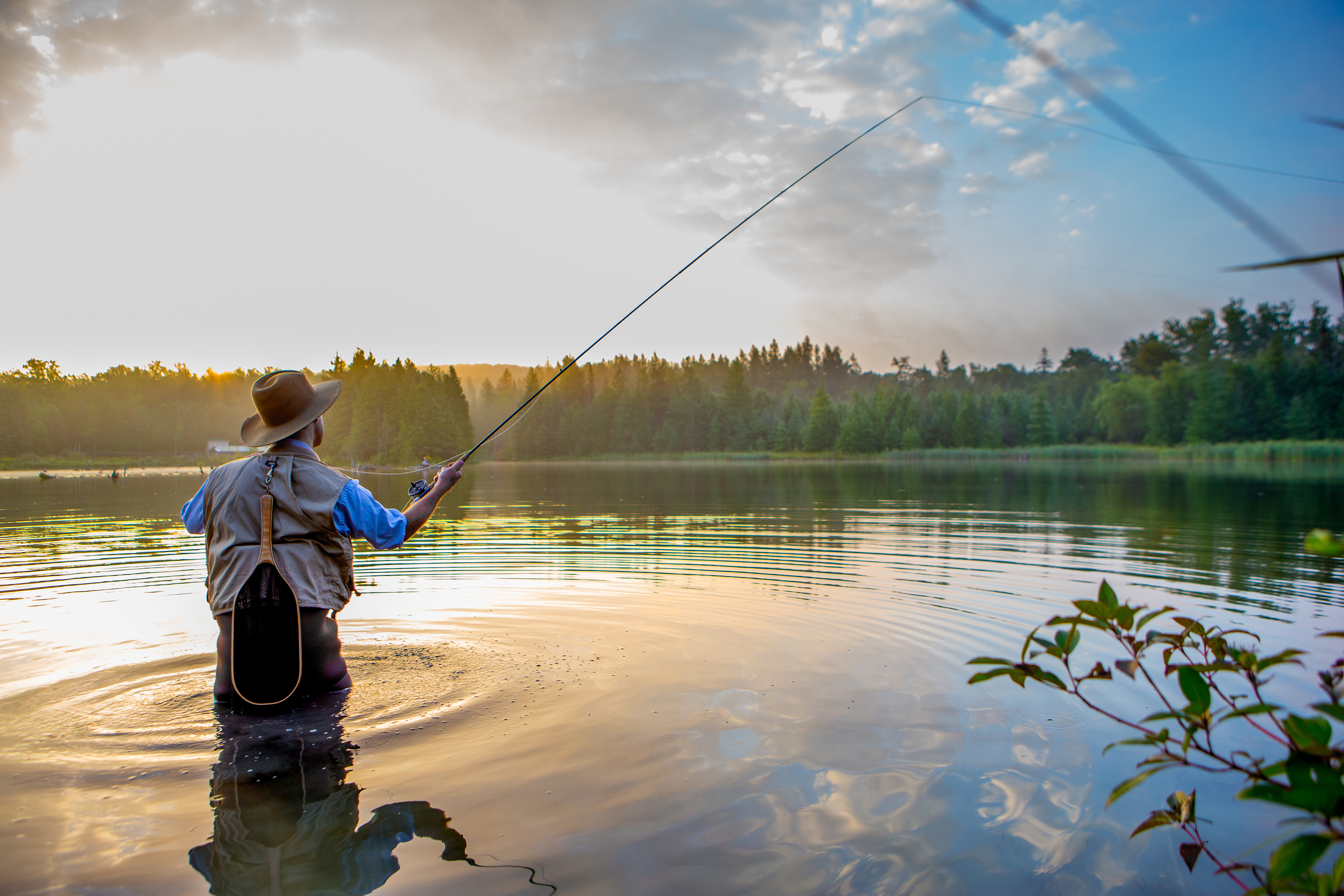 How Much Is a Fishing License in Tennessee | 10Best