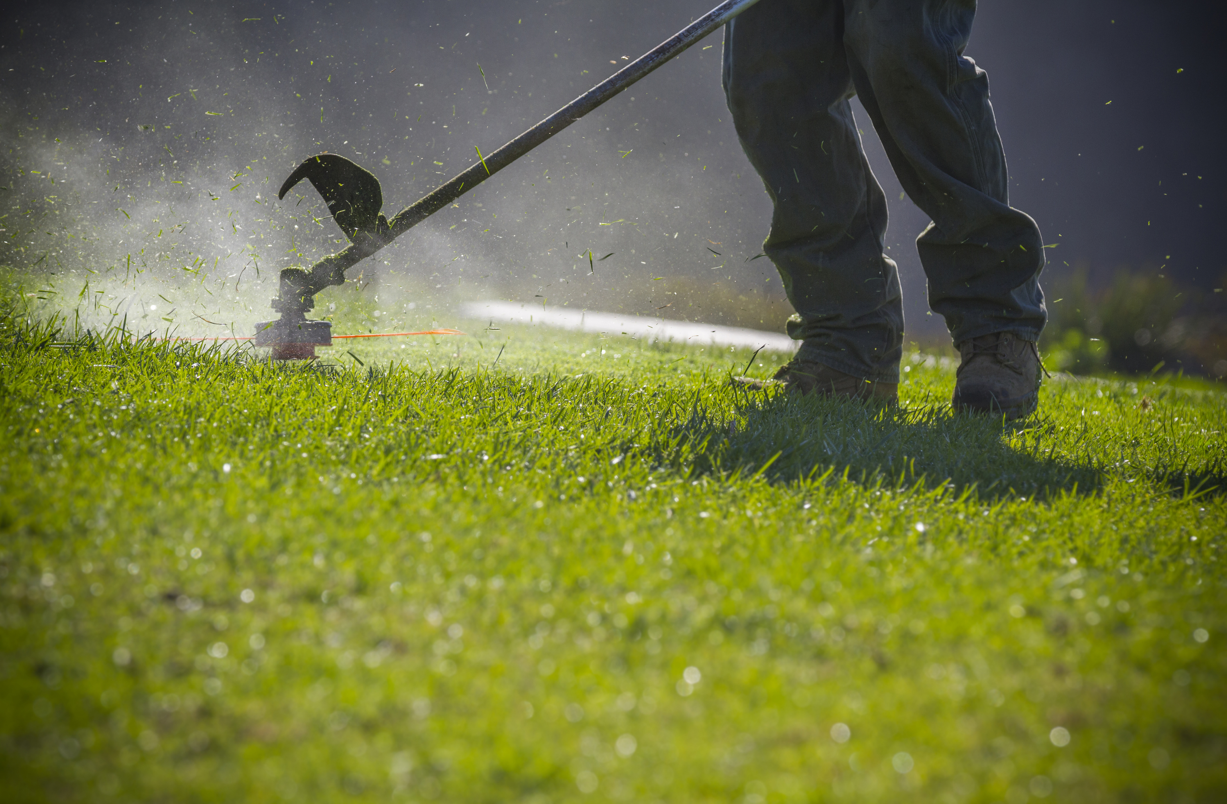 Why Does the Primer Bubble Collapse on My Weed Eater? | Hunker