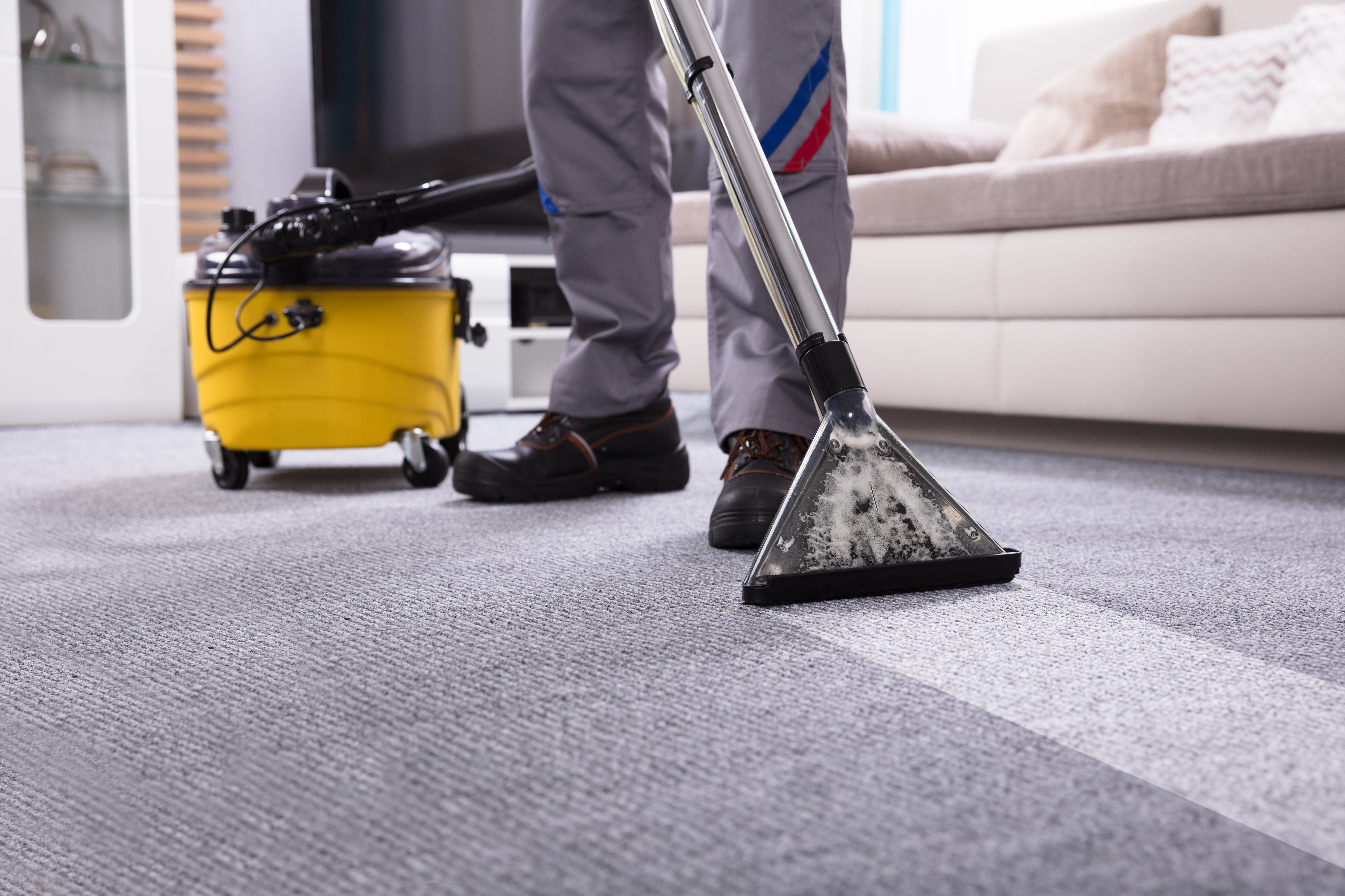 Tips On Using A Rug Doctor Really Dirty Carpet Home Guides Sf Gate