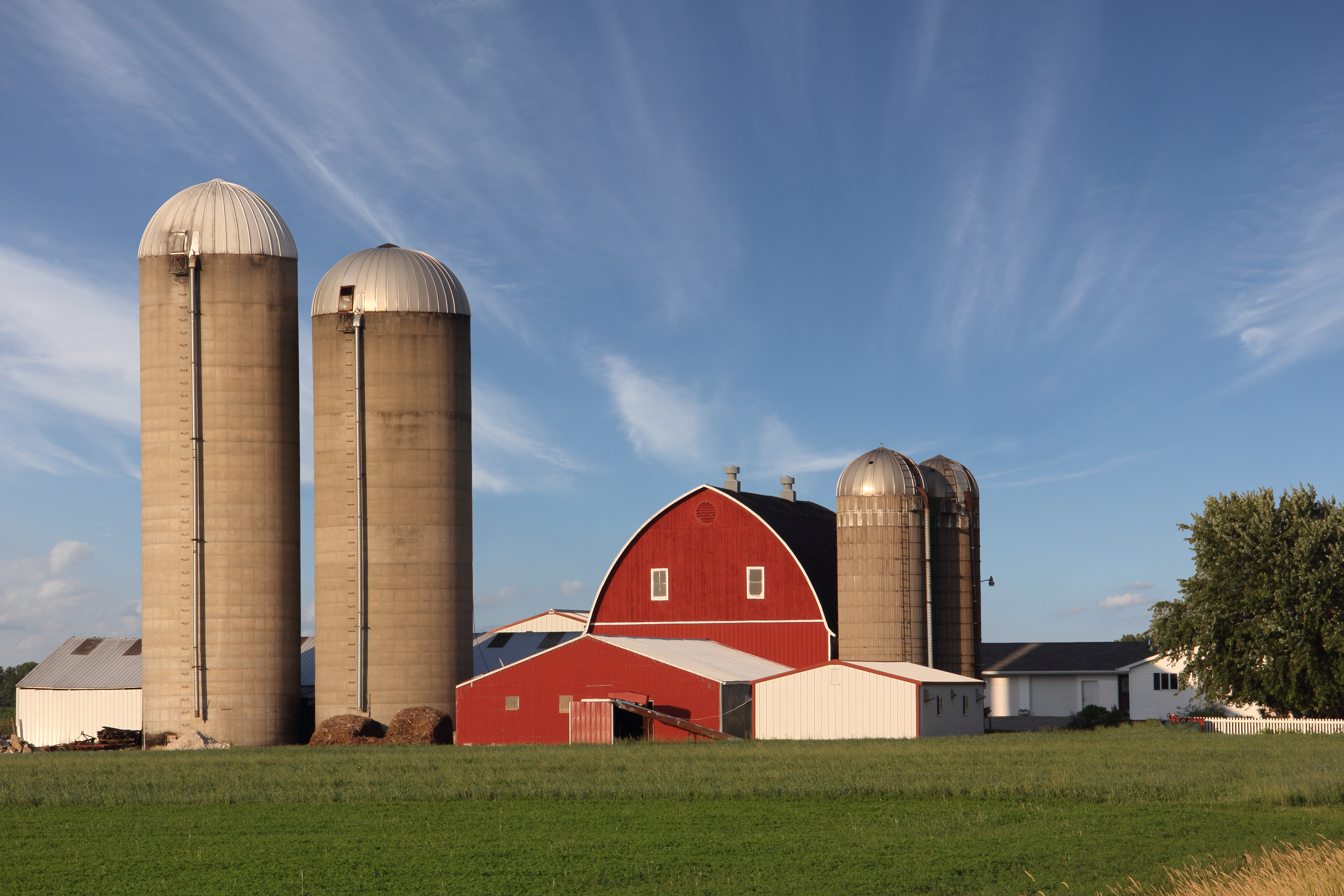 How Do Grain Silos Work?