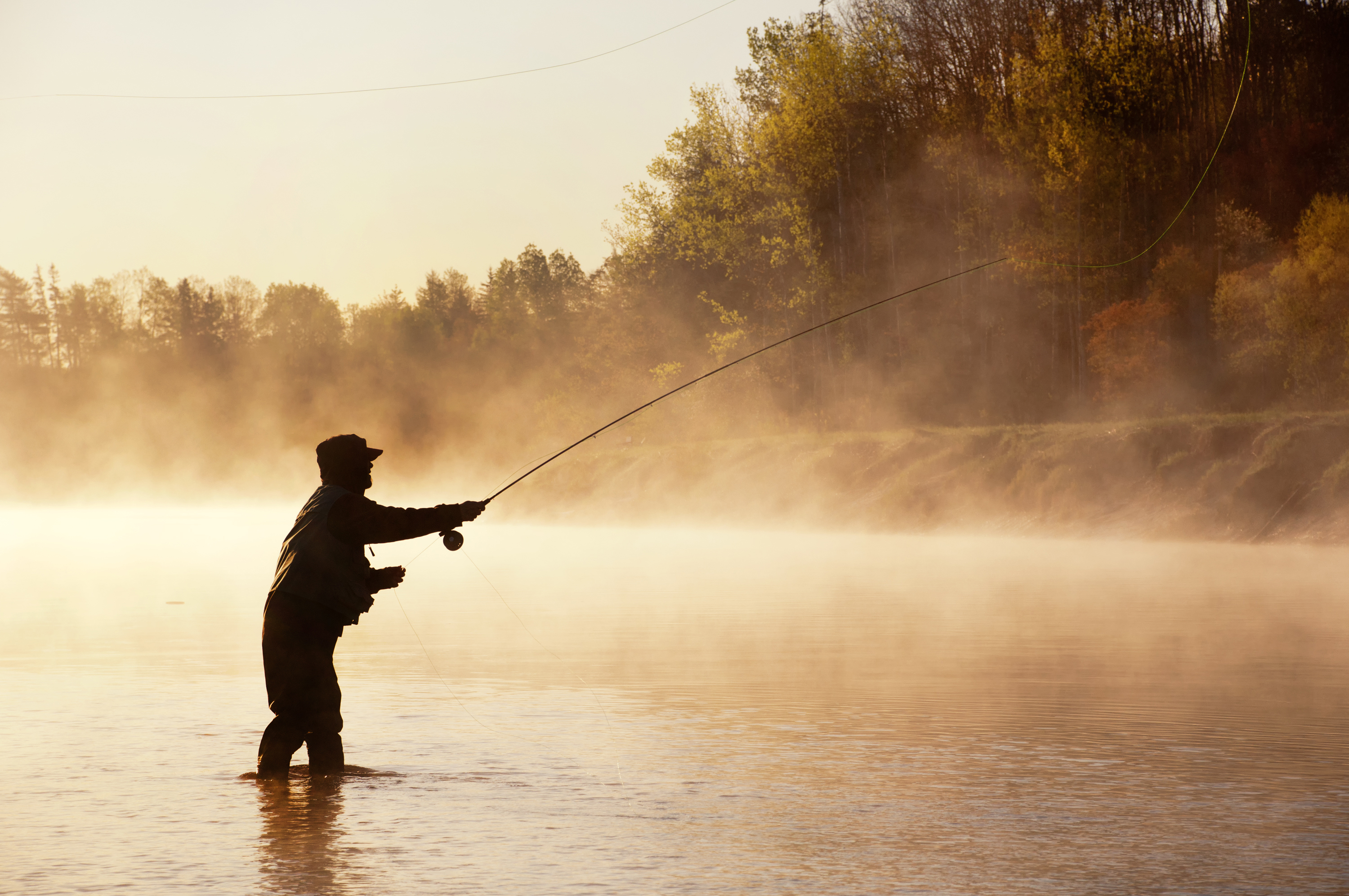 Fishing Hot Spots on the Mississippi River | USA Today
