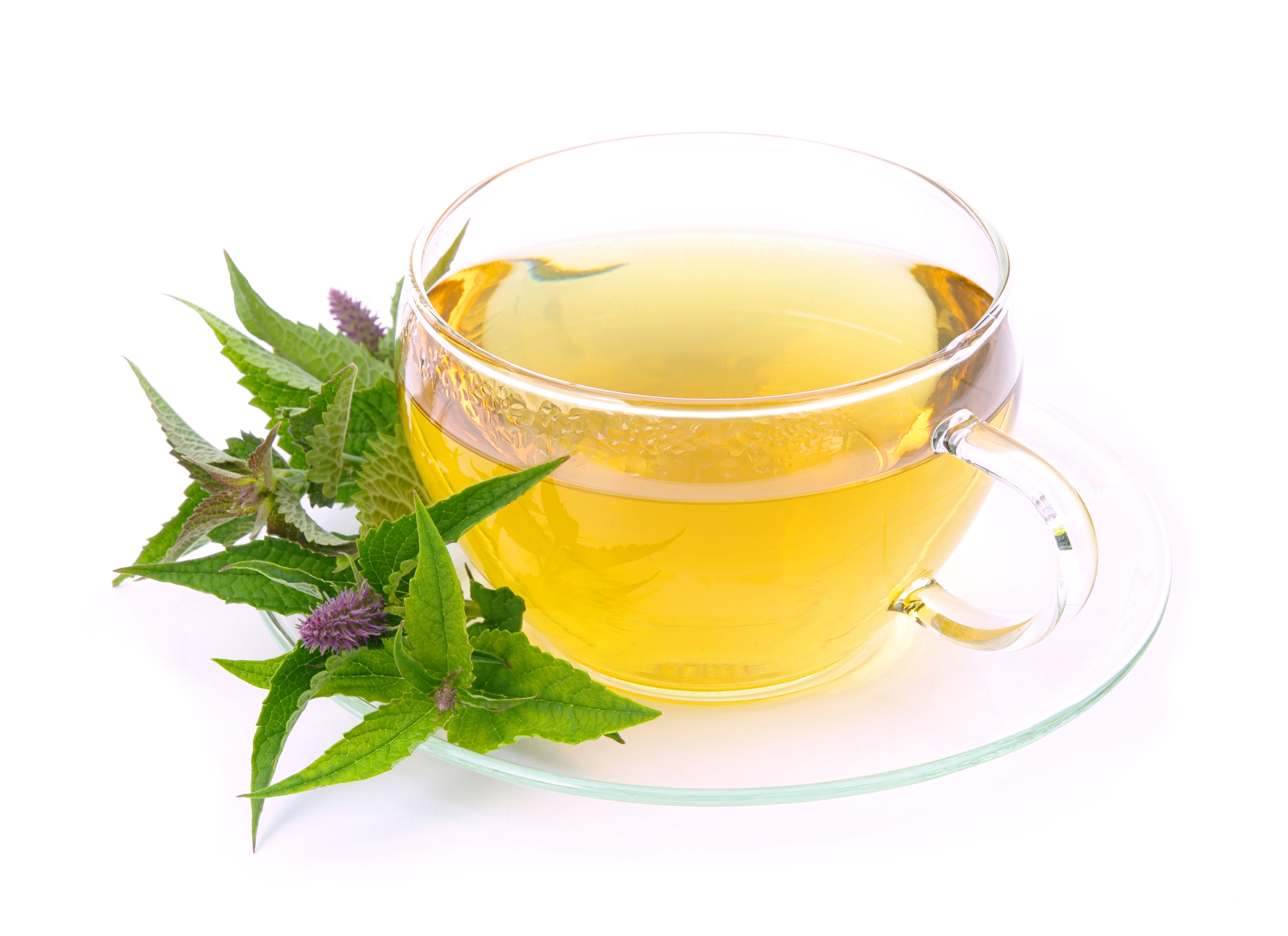 What Is Hyssop Tea Good For? | Healthy Eating | SF Gate