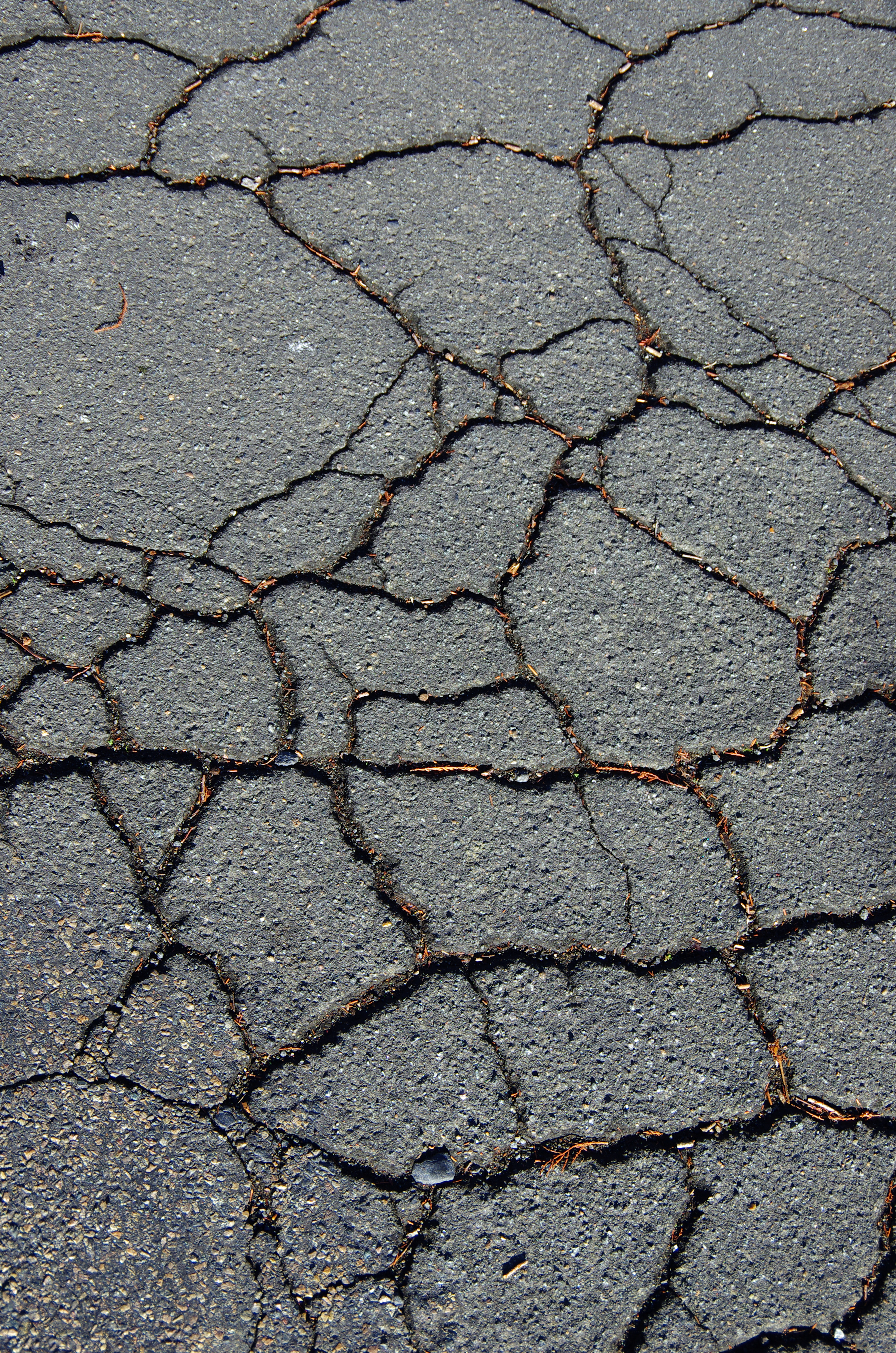 Concrete Slab Repair: What to Do With a Sinking Concrete