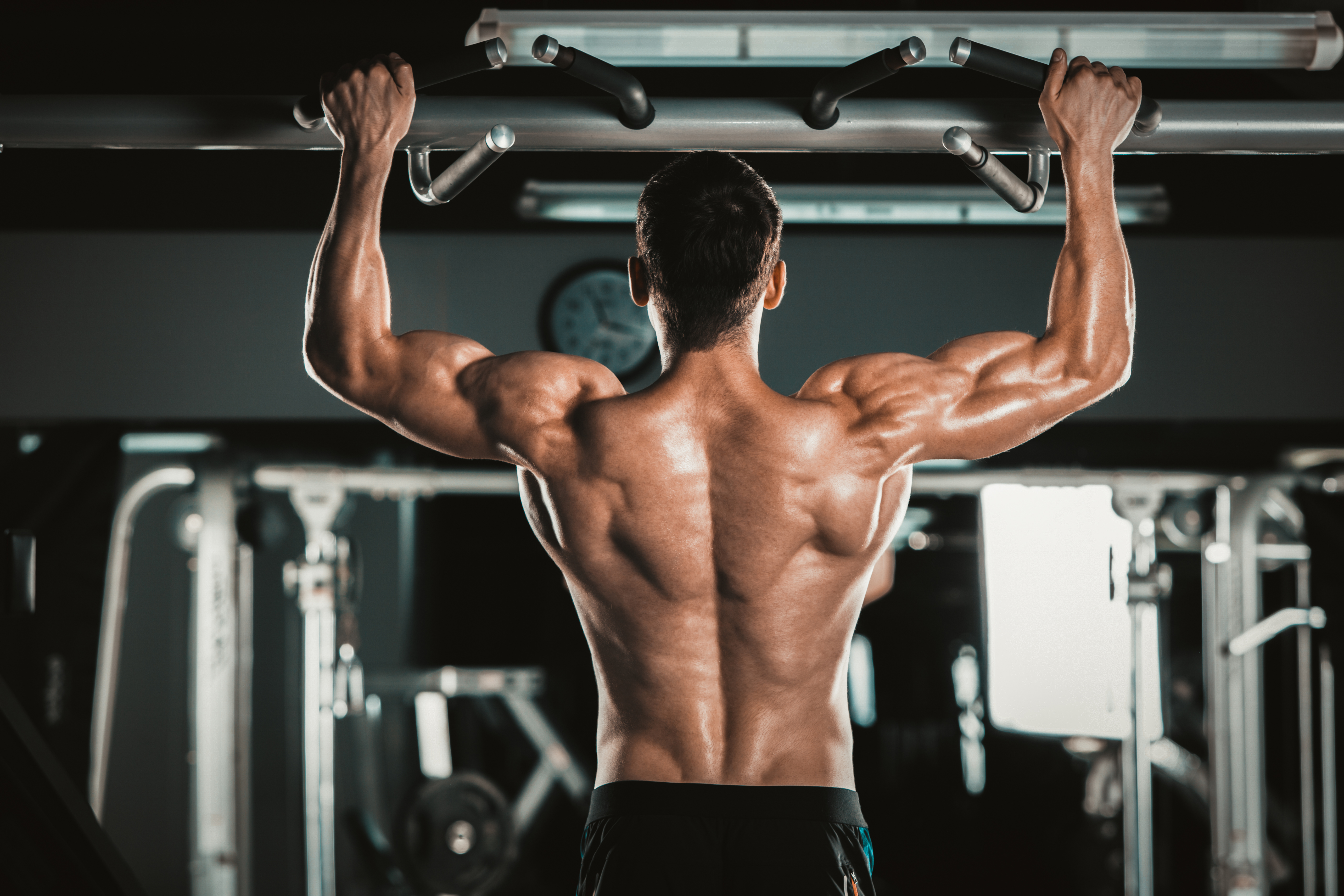 The Four Properties Of Muscle Cells Sciencing