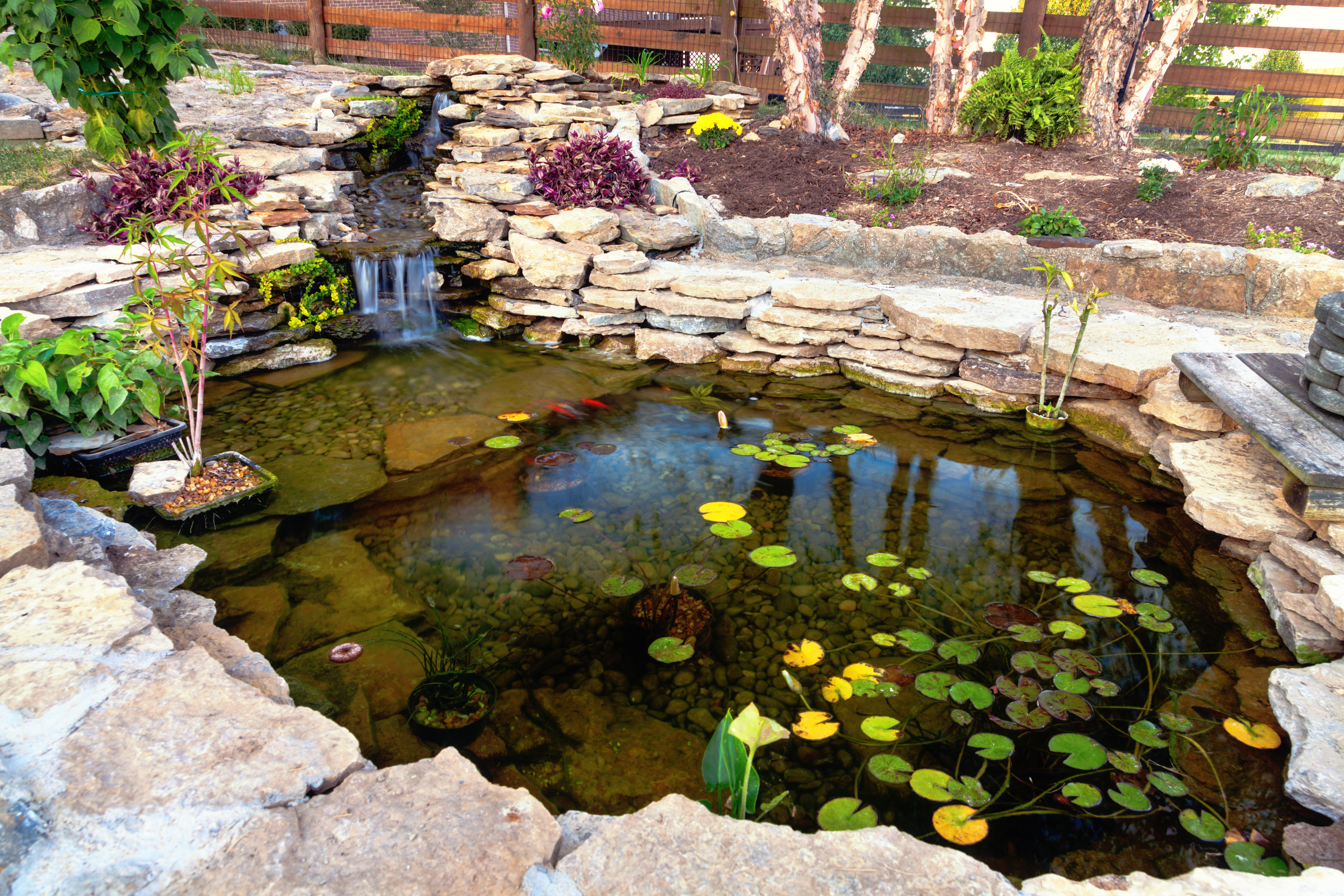 What Is a Safe Way to Kill Weeds Around My Pond That Won't Harm My