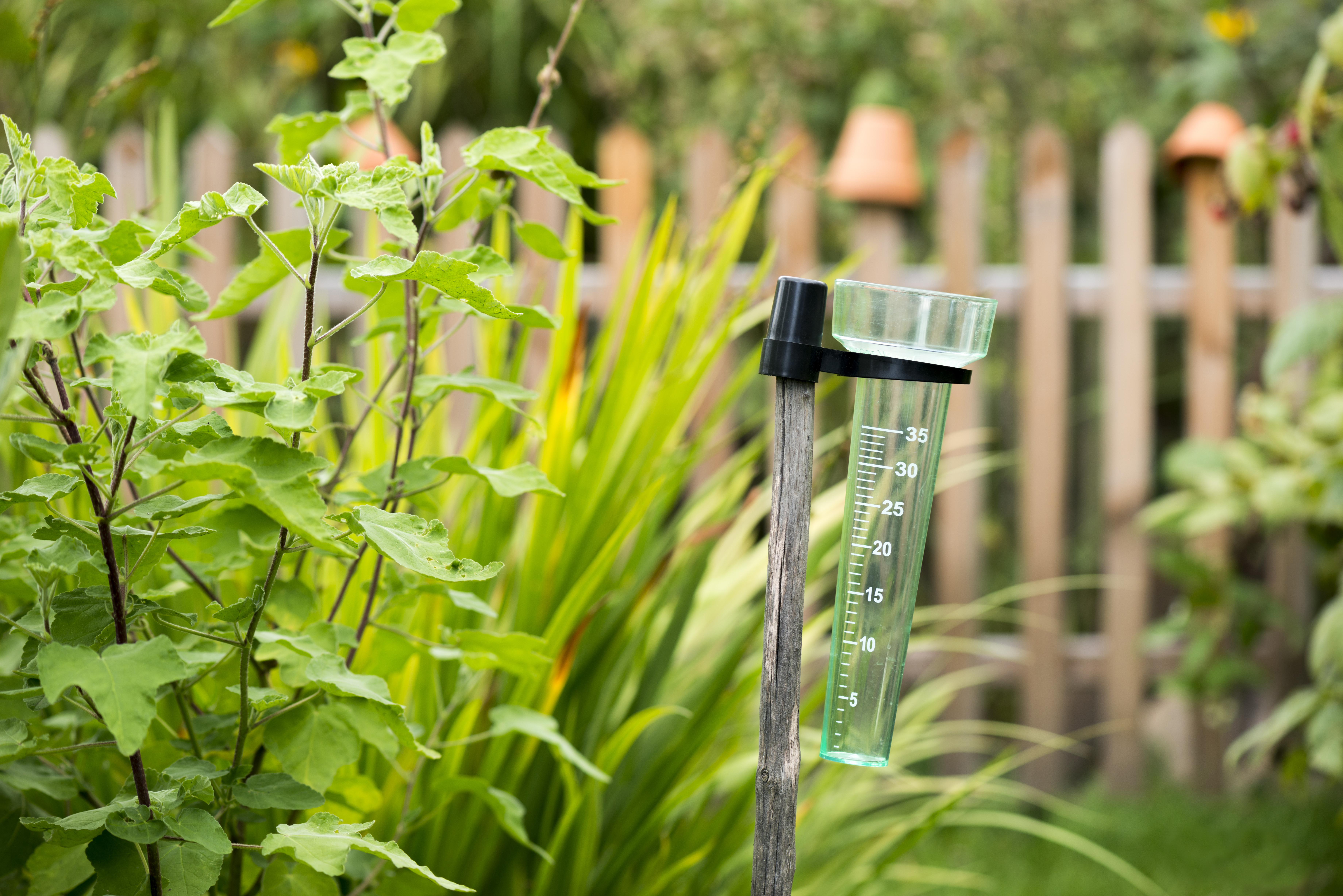 Easy Homemade Weather Instruments for Kids   Sciencing