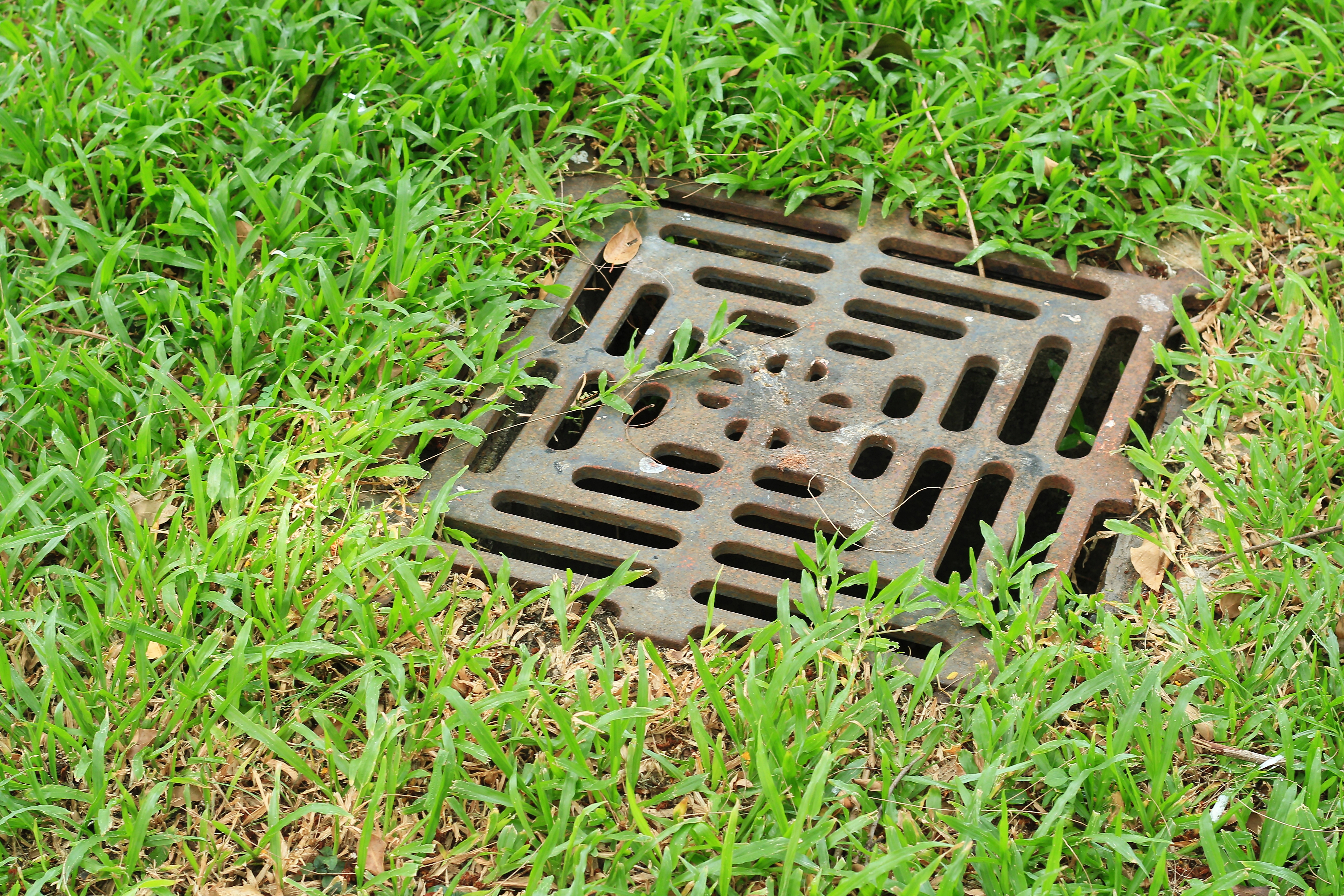 How to Put Drain Tile in Wet Yard Areas | Home Guides | SF Gate