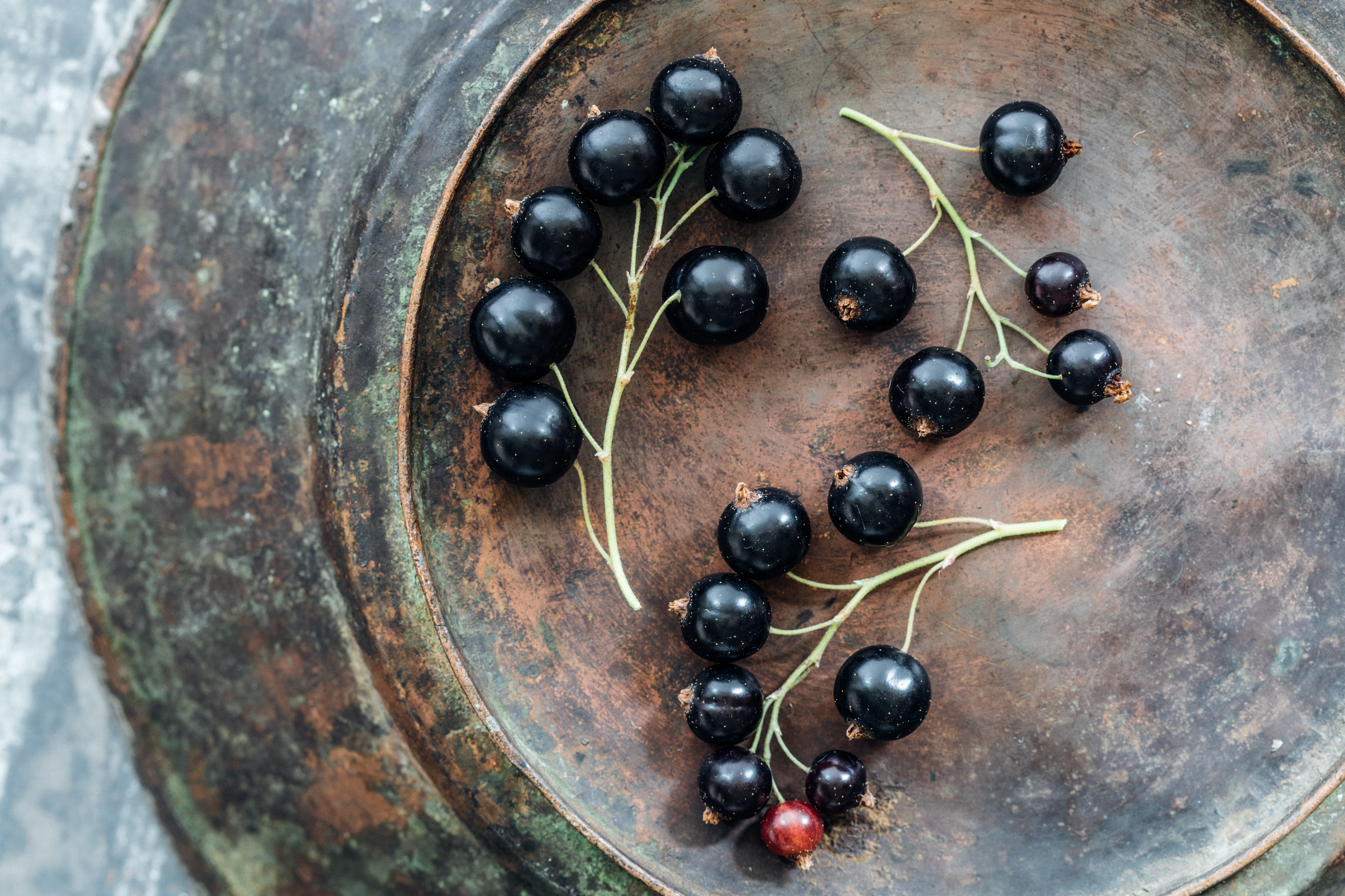 What Are the Health Benefits of Dried Black Currants