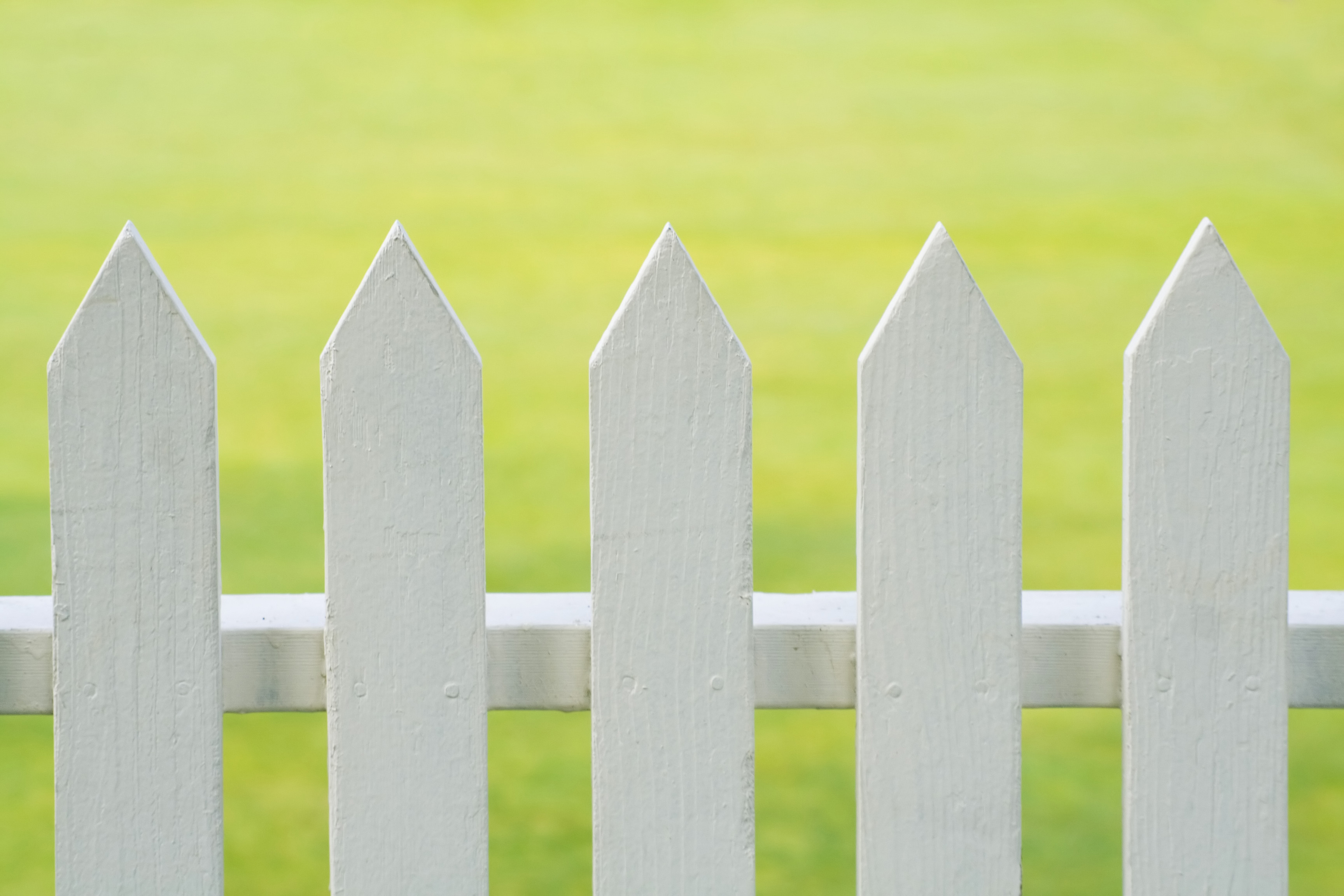 What Can You Do When Your Neighbor's Fence is on Your Property