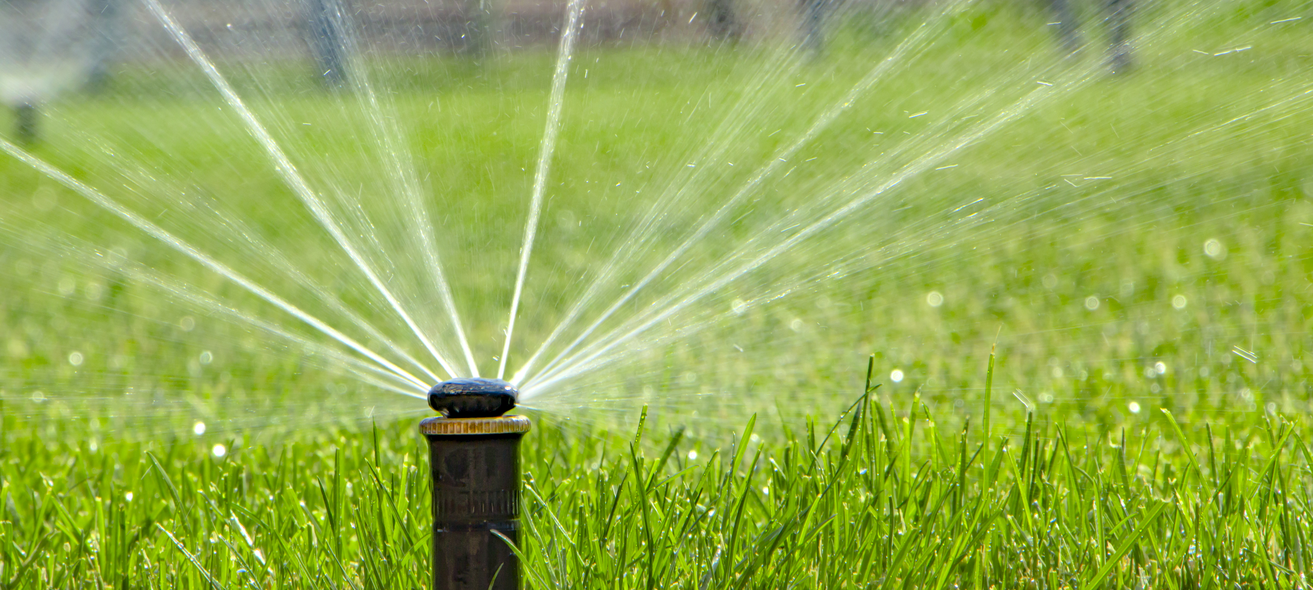 How to Fix a Sprinkler Head that Stays in an Up Position