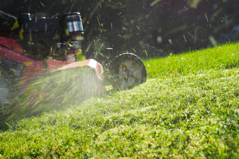 My Lawn Mower Won't Start | Hunker