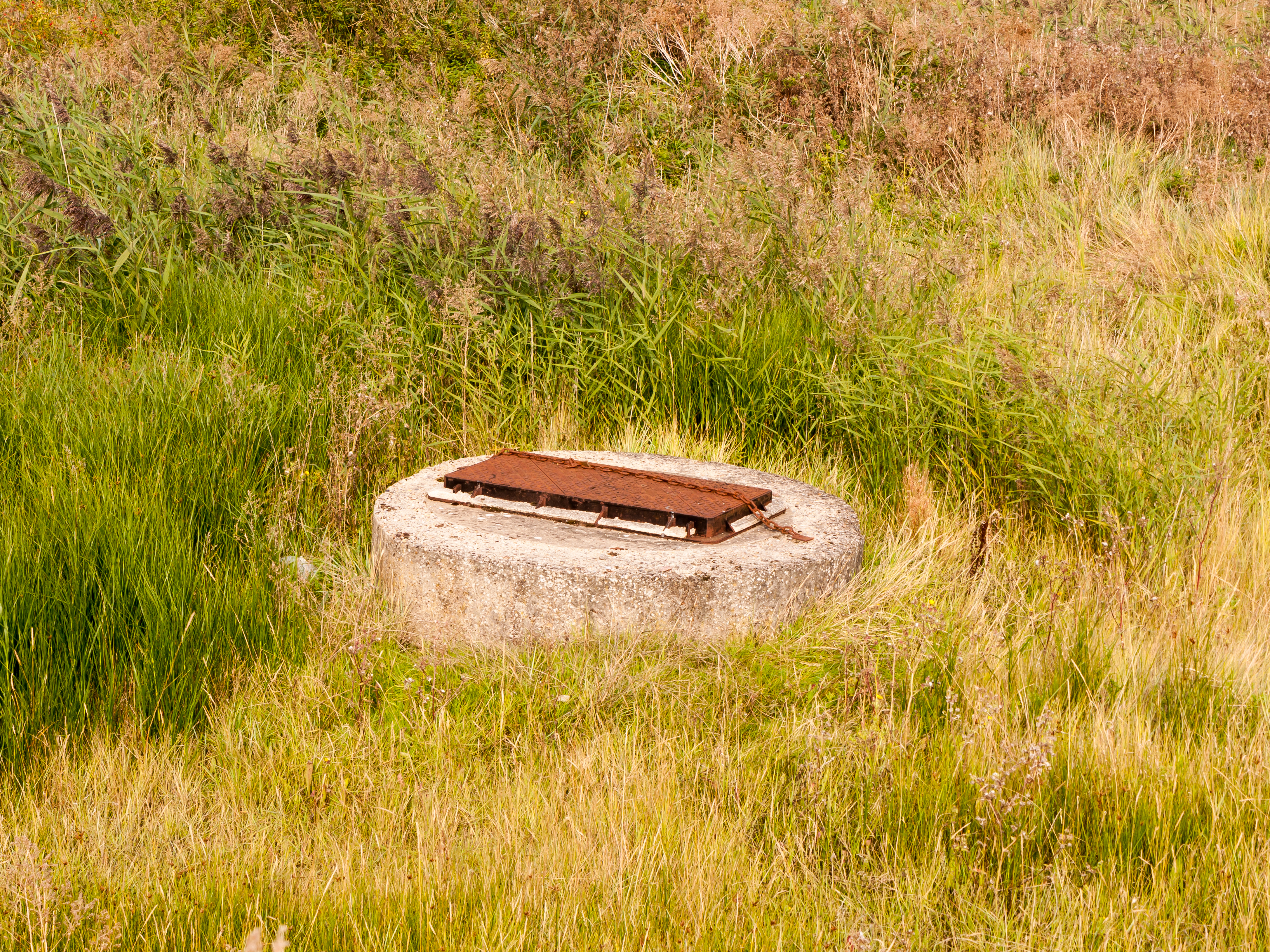 How to Add to an Existing Septic Tank | Hunker