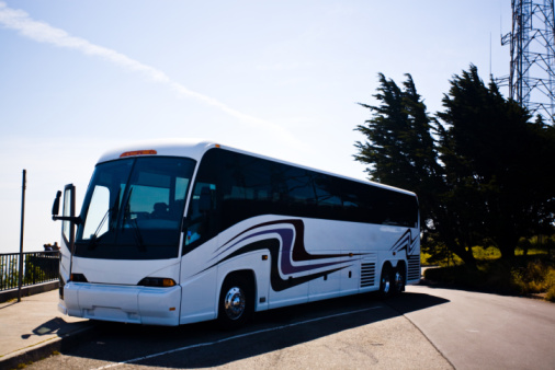 Free casino bus trips houston jumers casino grand opening