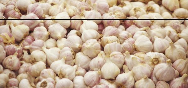 Garlic for Psoriasis