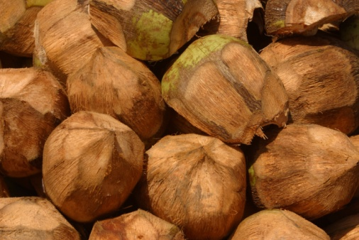 Economic Importance of Coconut Oil | Bizfluent