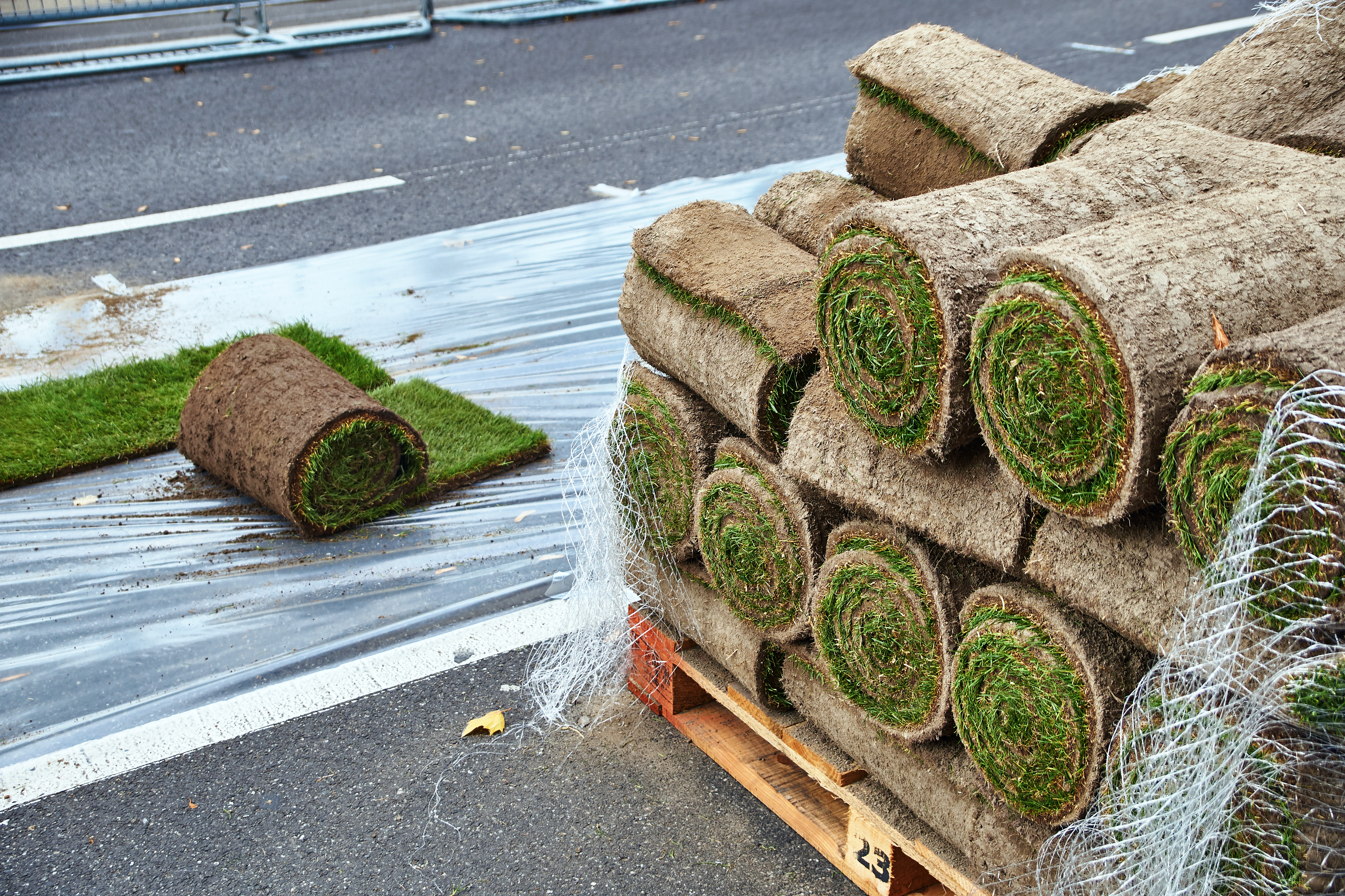 Dos & Don'ts of Laying Sod | Home Guides | SF Gate