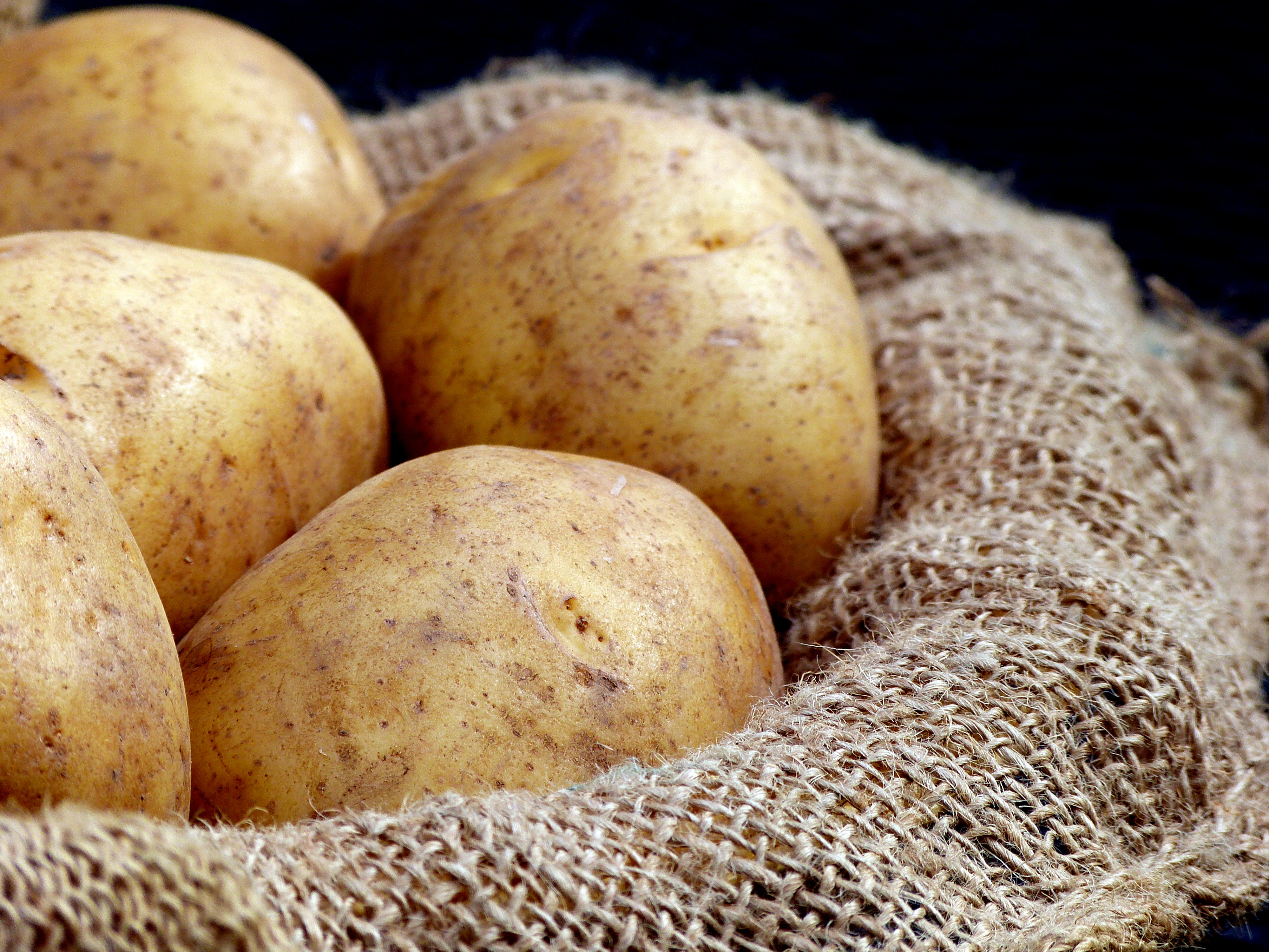 how does temperature affect the rate of osmosis in potatoes