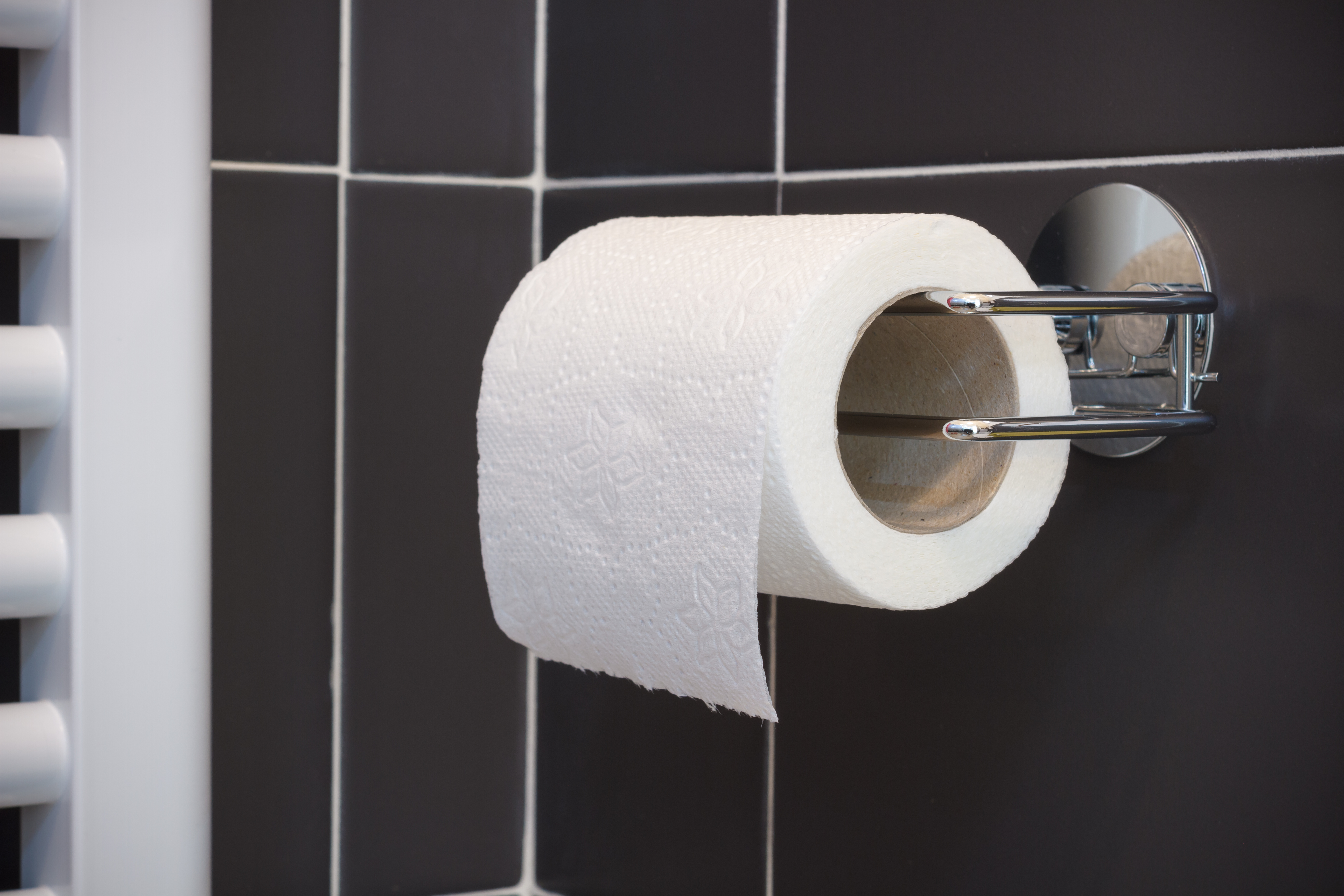 How To Take Off An Old Toilet Paper Holder Hunker