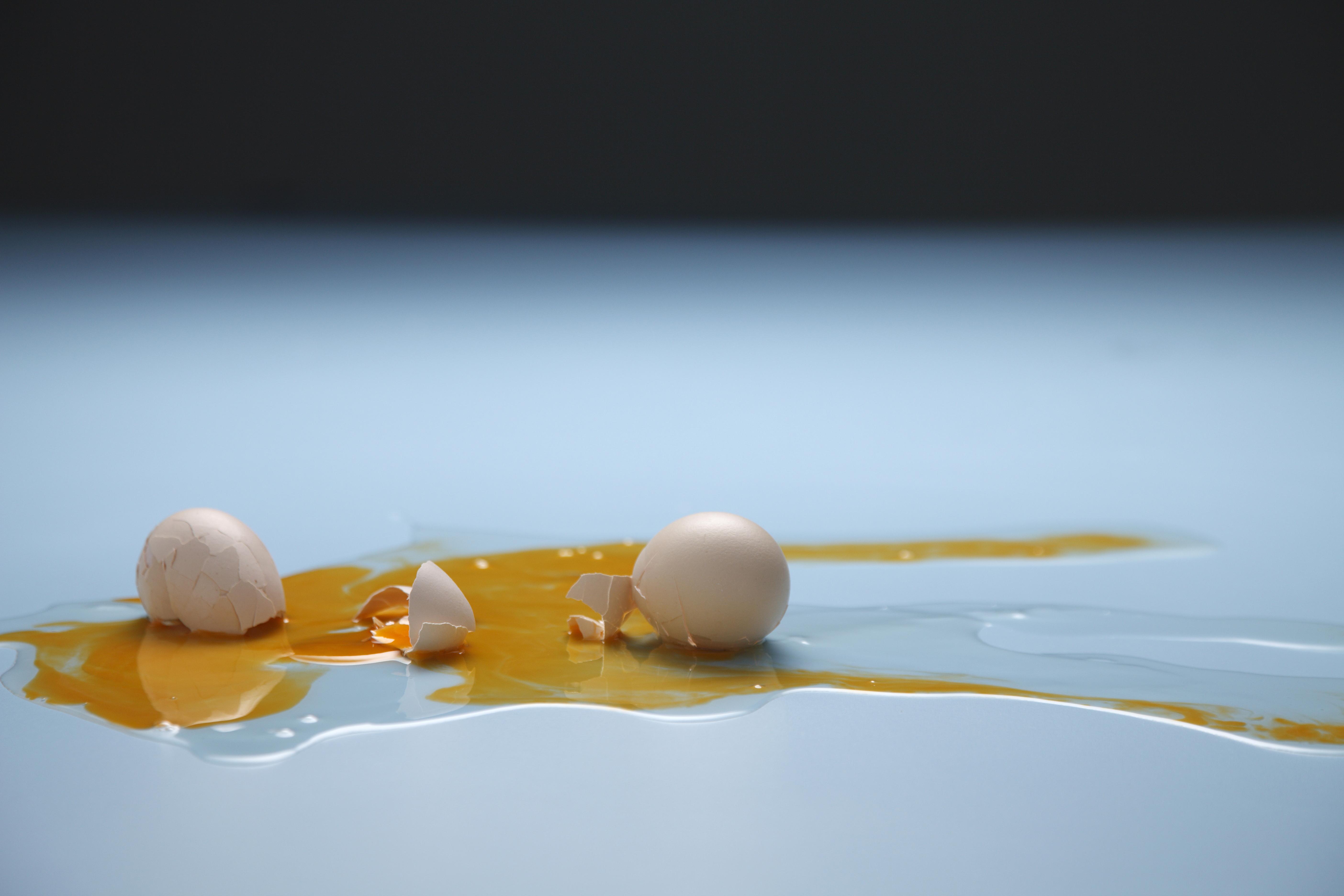 egg drop experiment using straws