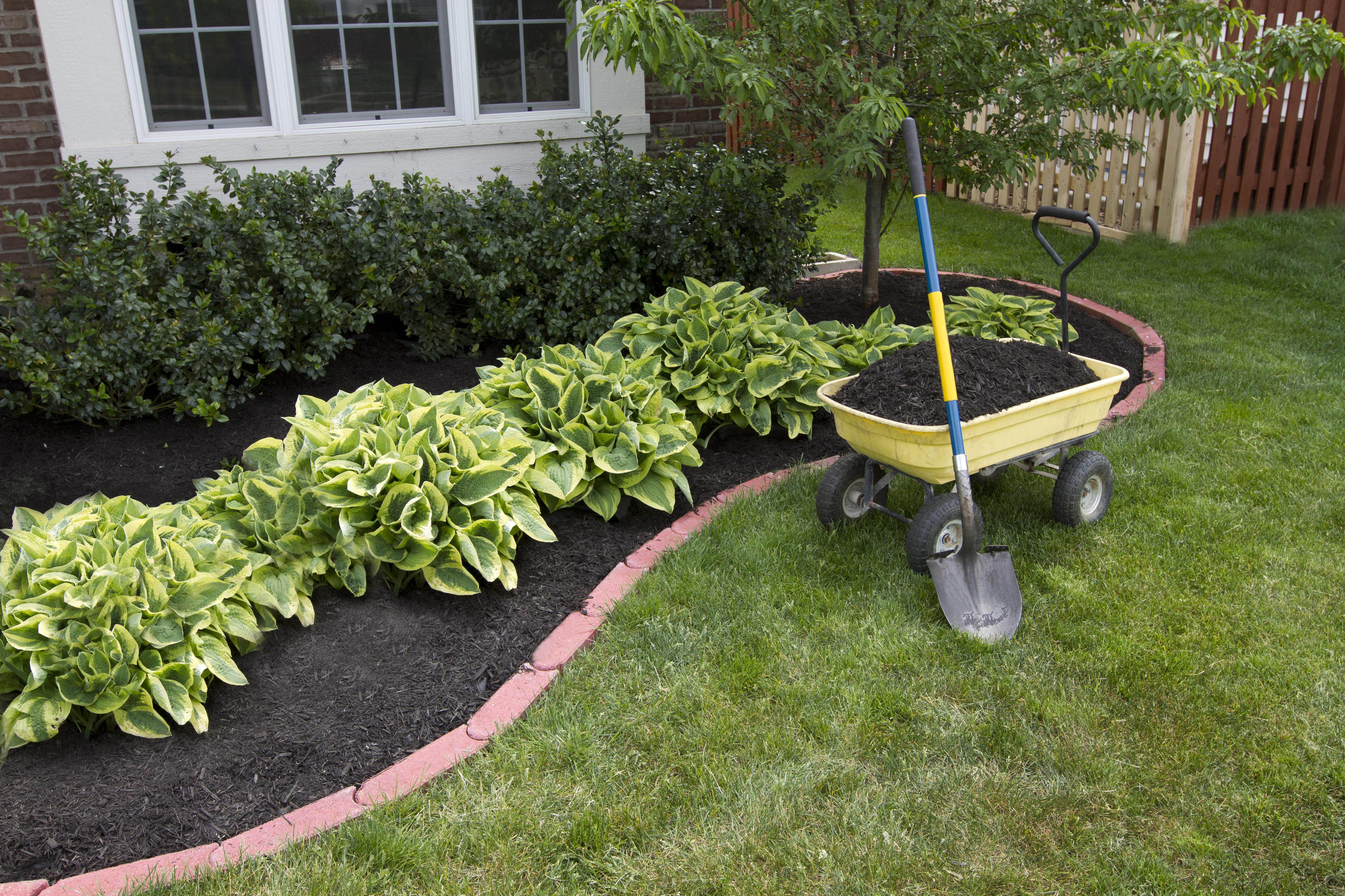 Can I Add Topsoil to My Existing Lawn? | Home Guides | SF Gate