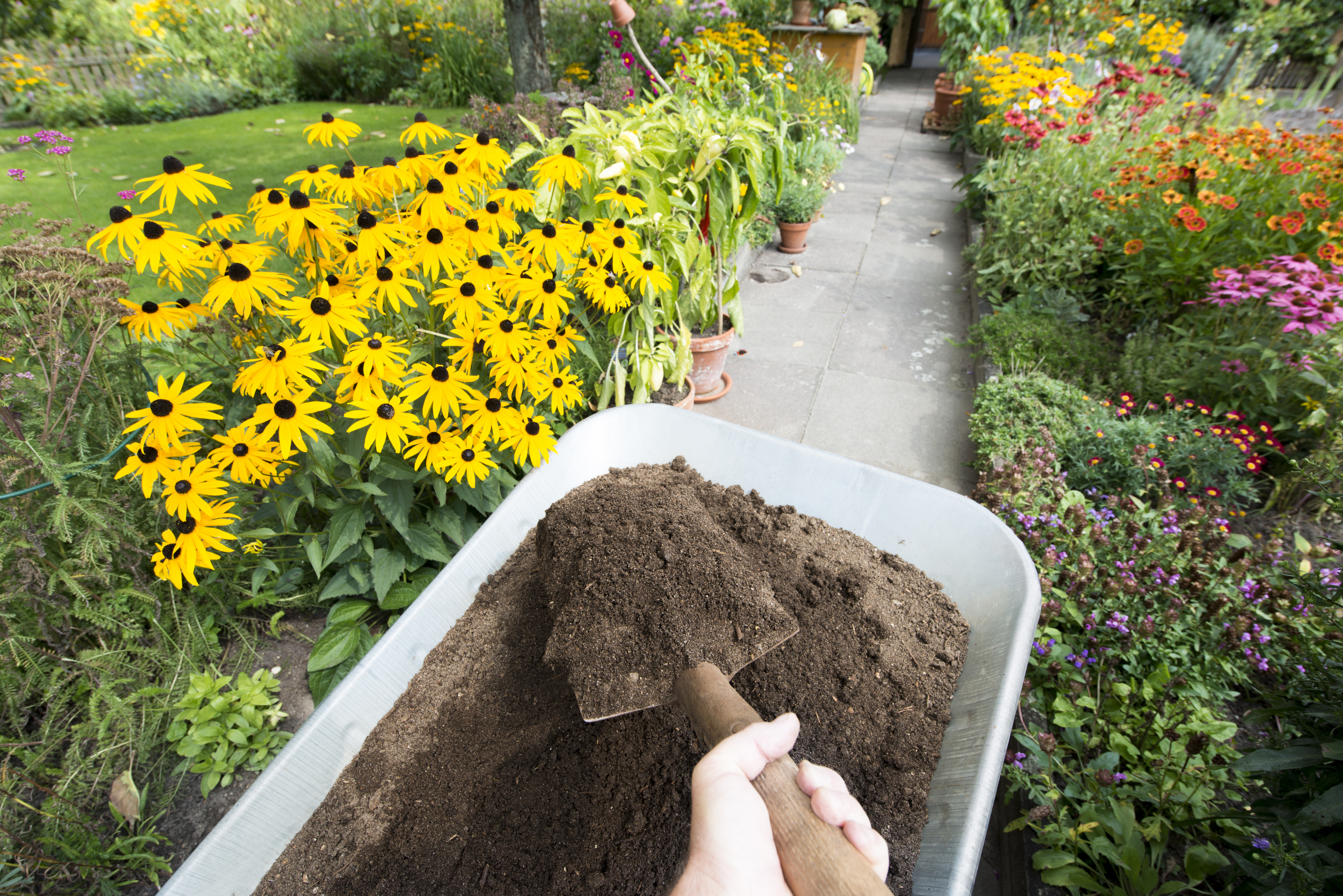 Advantages Disadvantages Of Natural Chemical Fertlilzers Home
