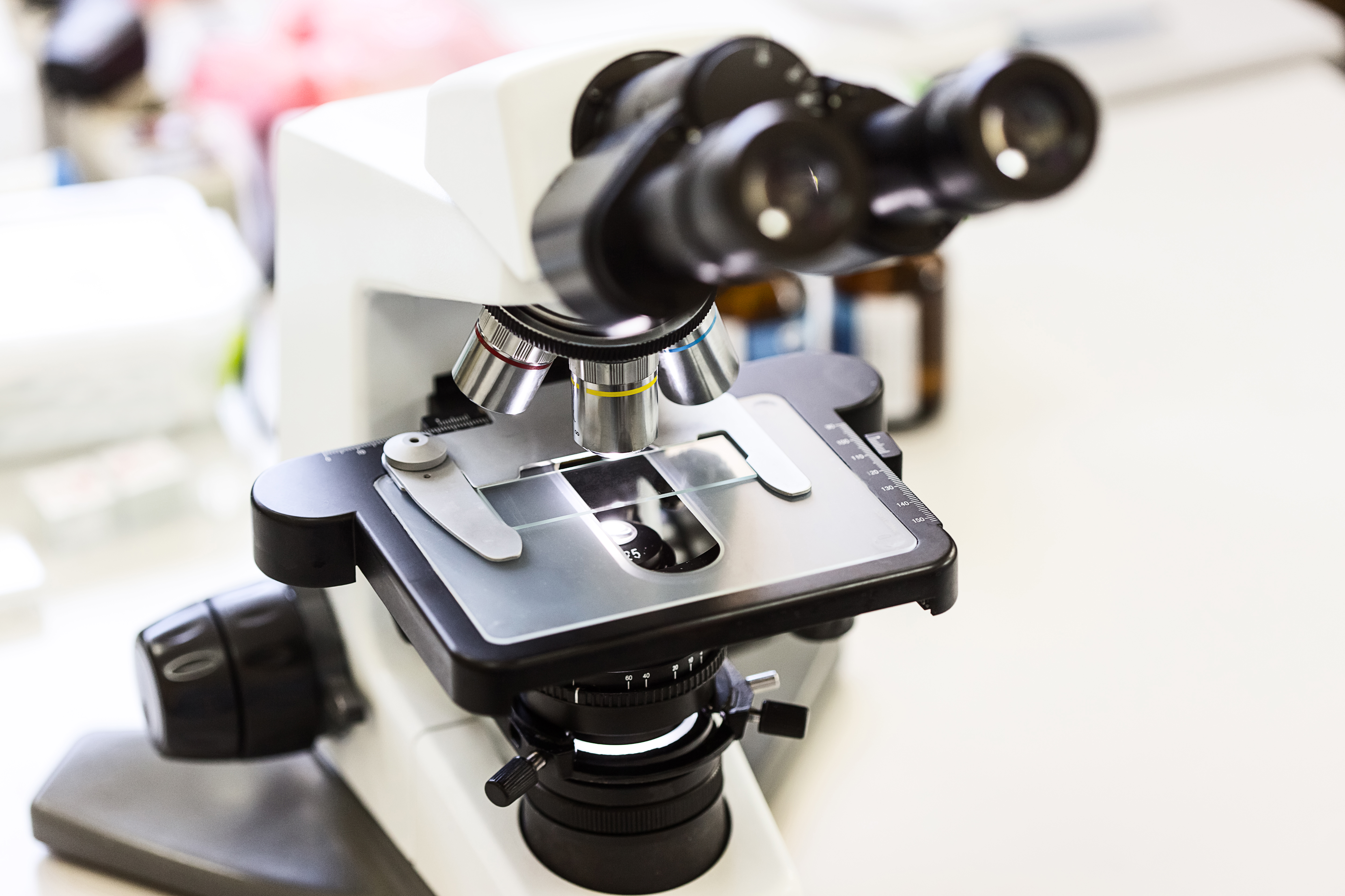 What Is Magnification on a Microscope?