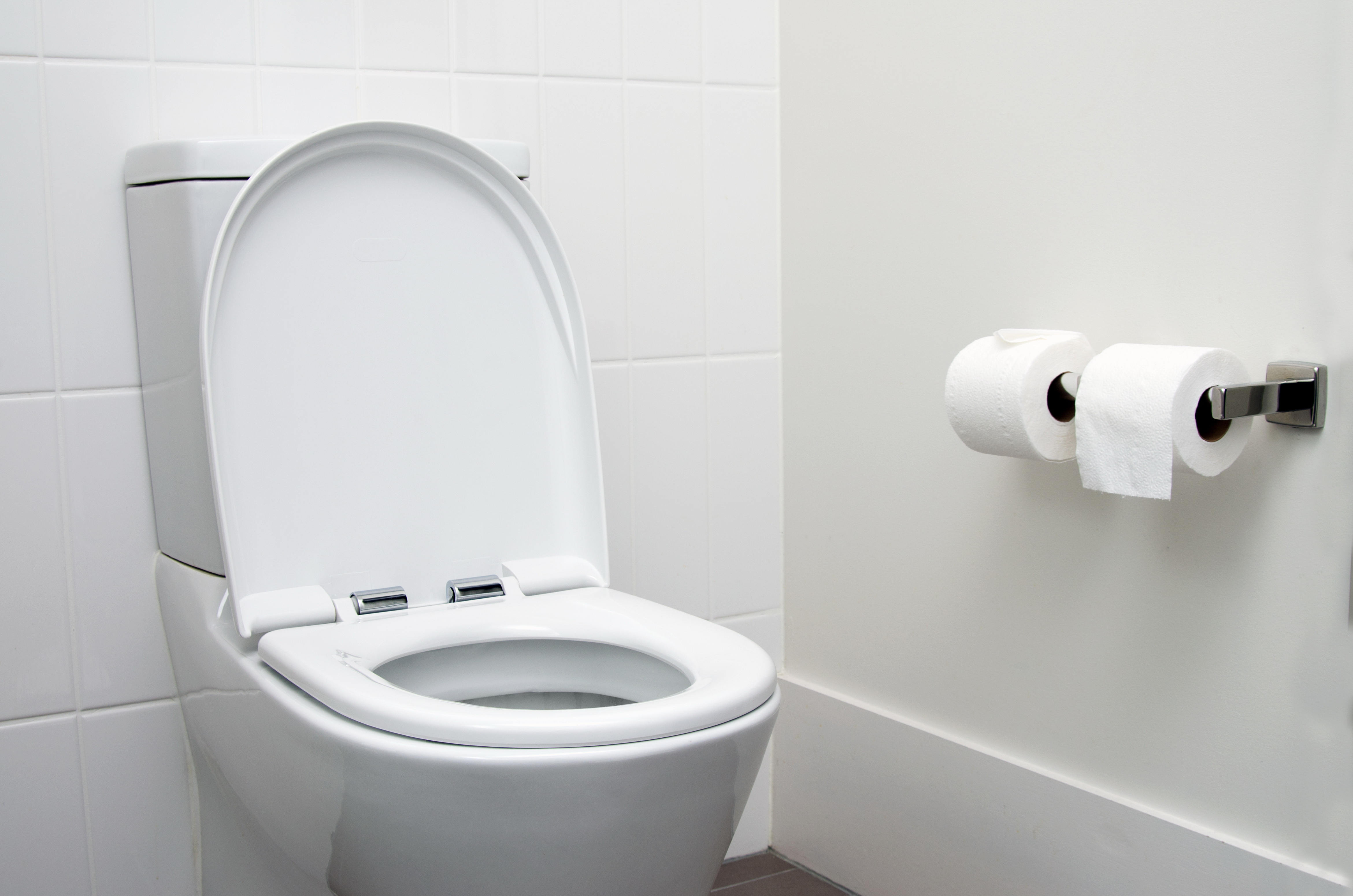 On Which Side Of The Toilet Should The Paper Holder Be Hunker