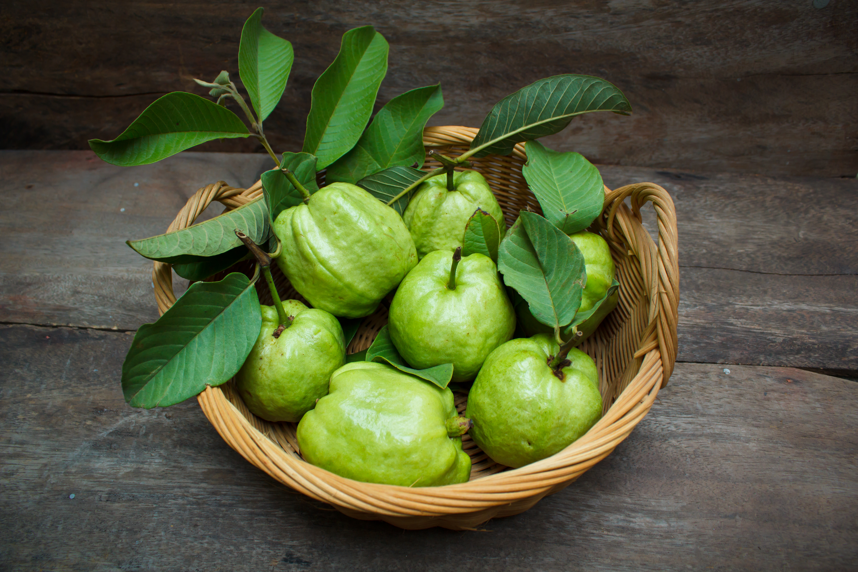 The Health Benefits Of Guava Leaf Tea Healthy Eating Sf Gate