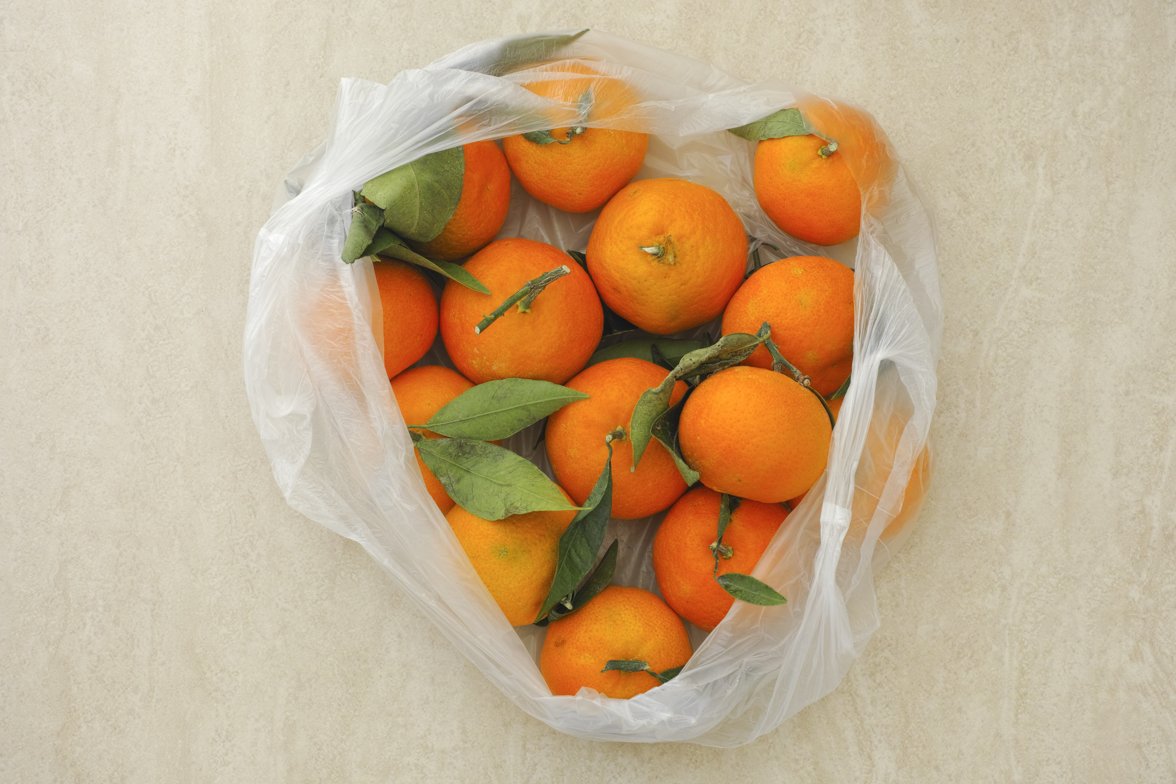 Can You Bring Fruit on a Plane? | 10Best