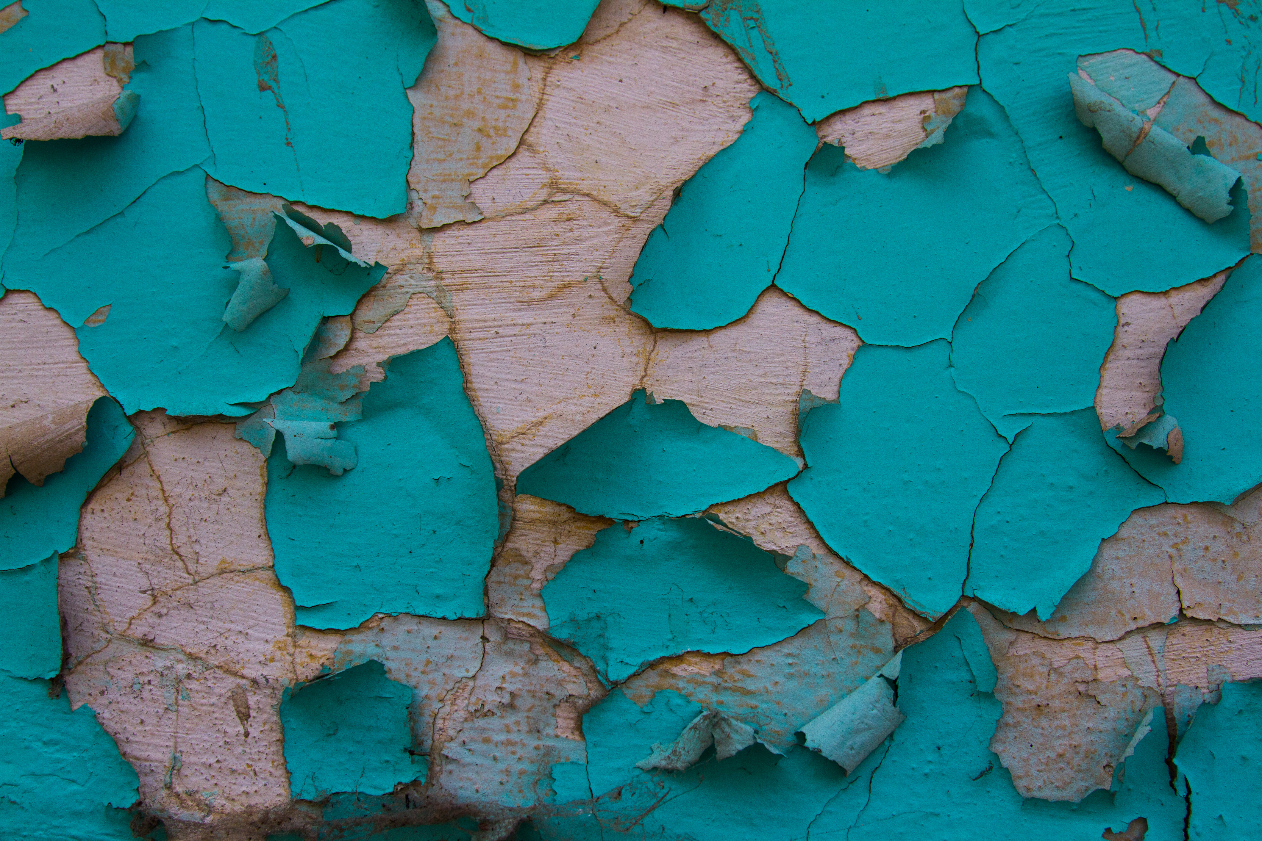 What Causes A House Ceiling To Keep Peeling Home Guides