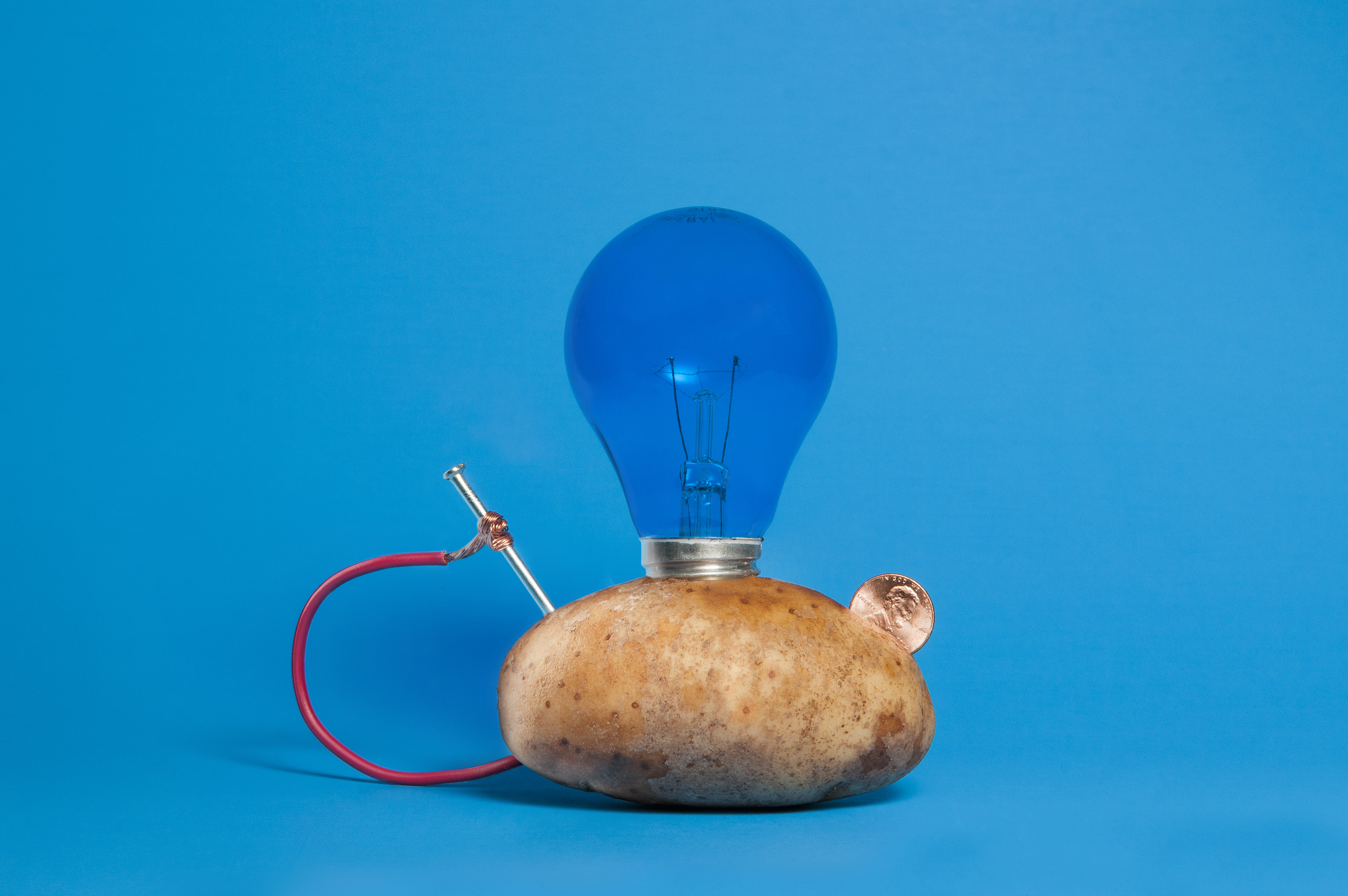 How To Make A Potato Powered Light Bulb Sciencing Battery Diagram