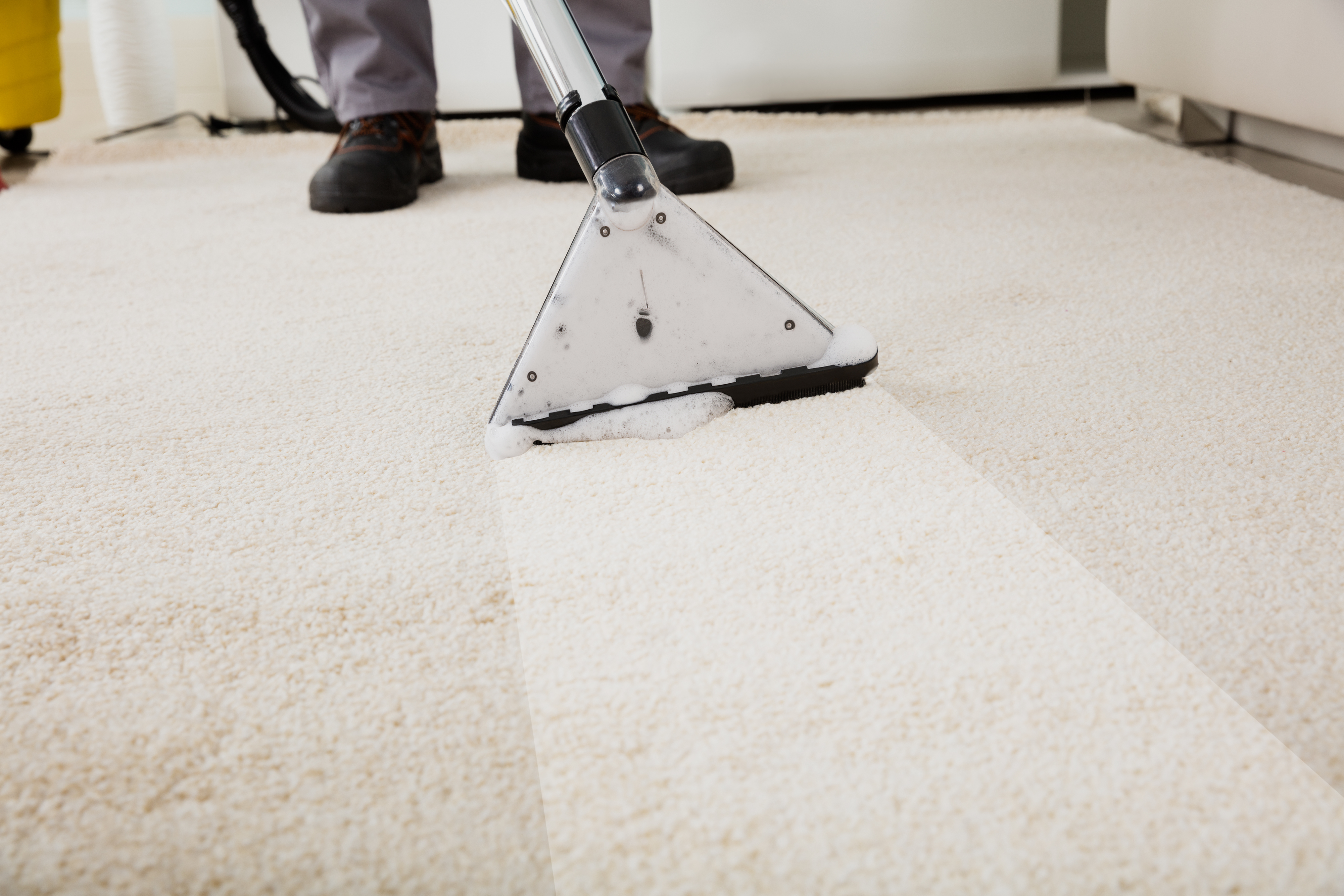 How to Get Dry Paint Out of Carpet | Home Guides | SF Gate